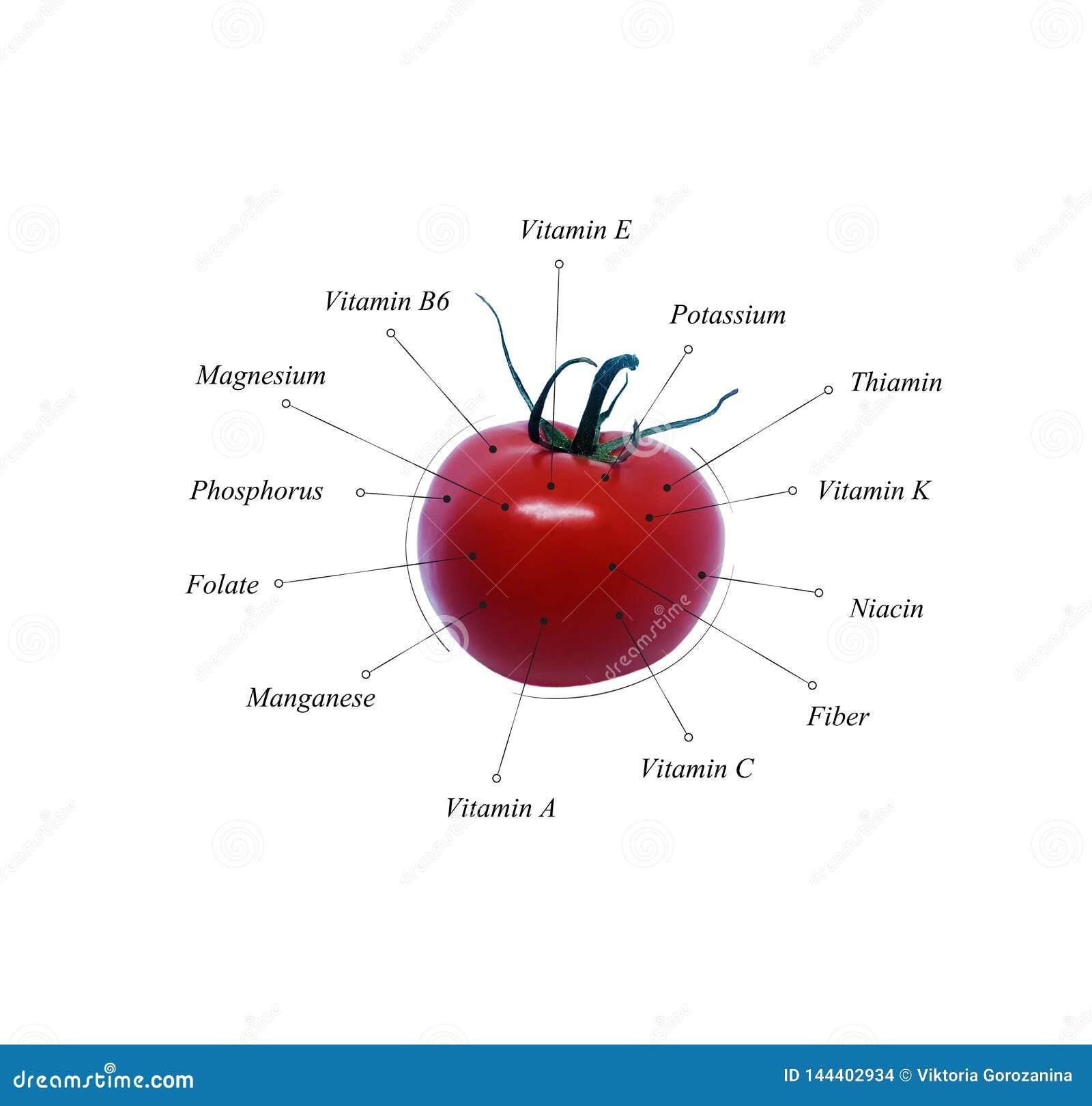 Pomidorowe odżywki Jarzynowa informacja ilustracja dieta zdrowa