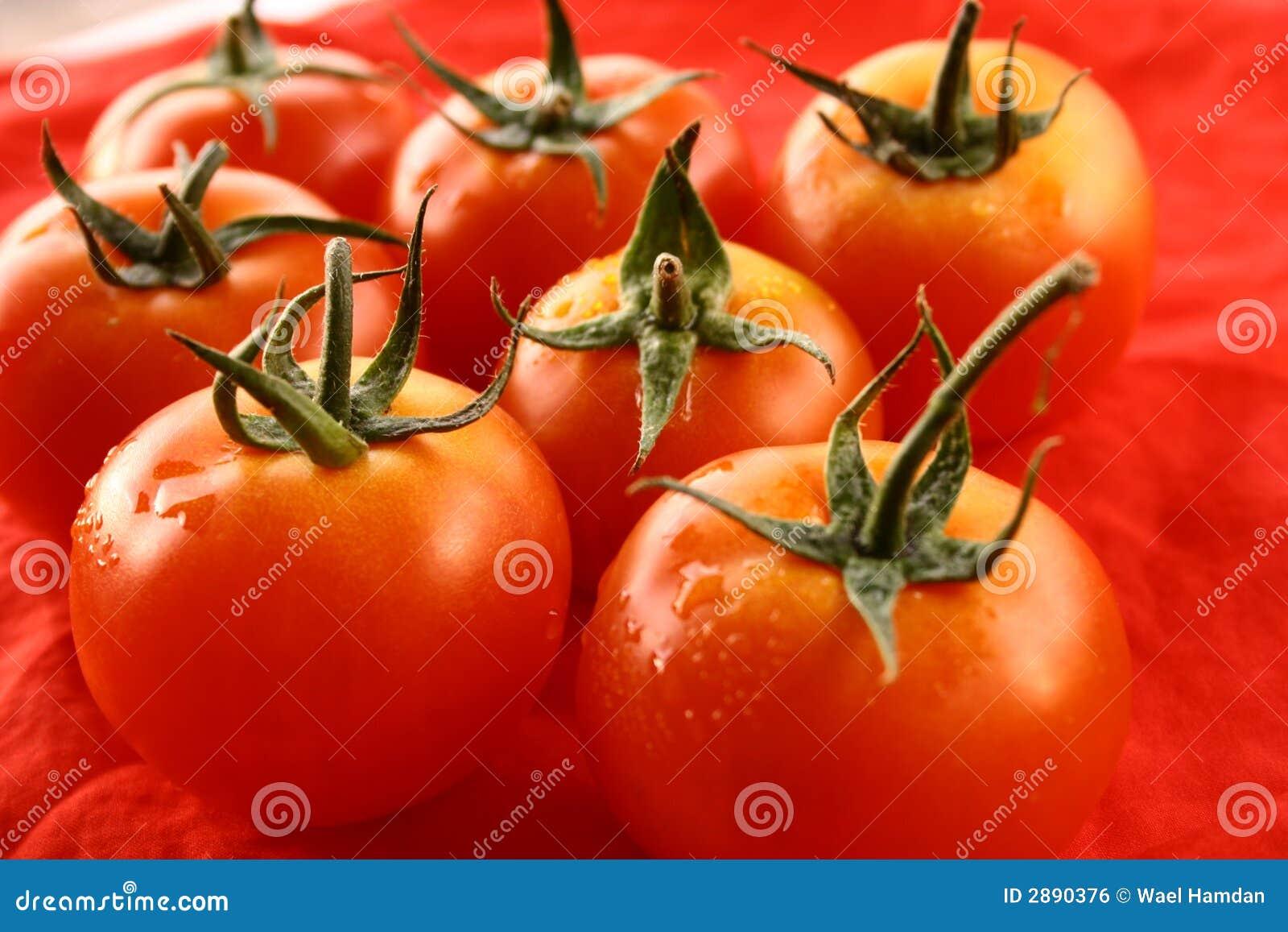 Pomidory owocowe