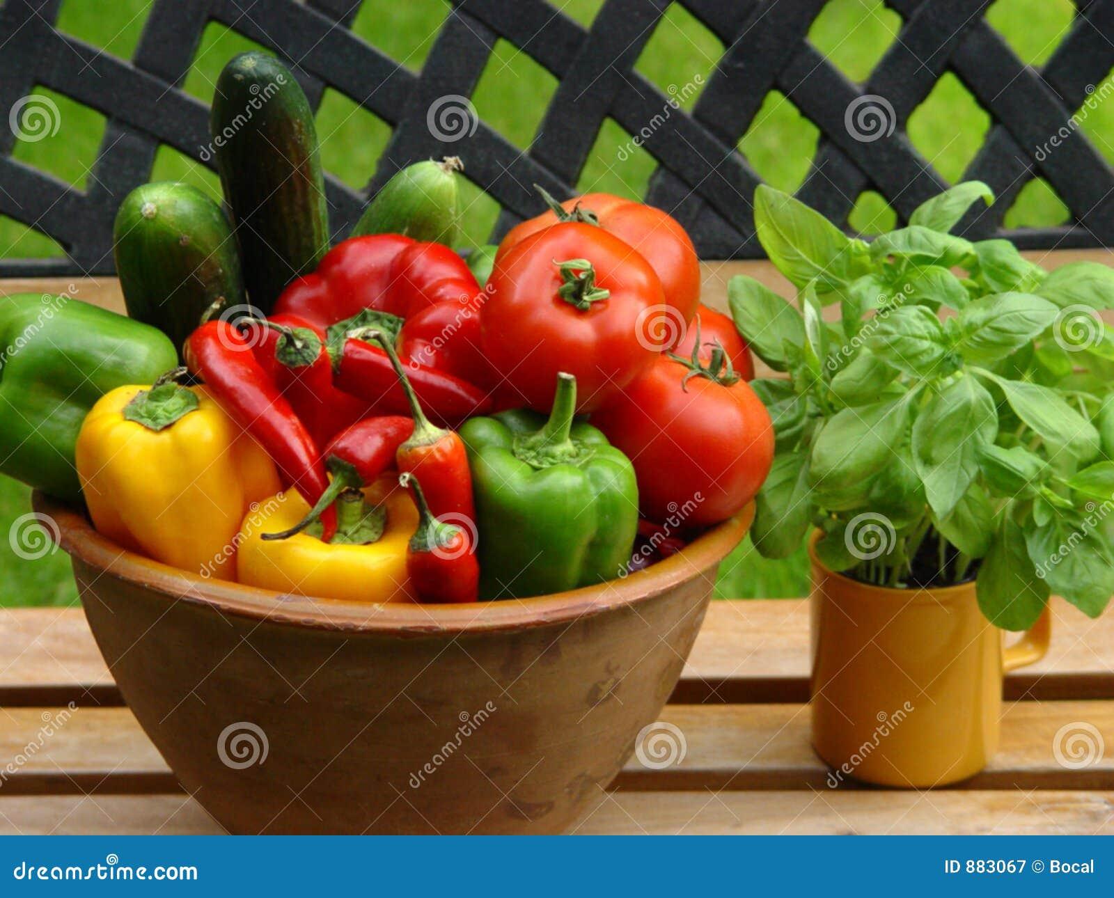 Pomidory papryka