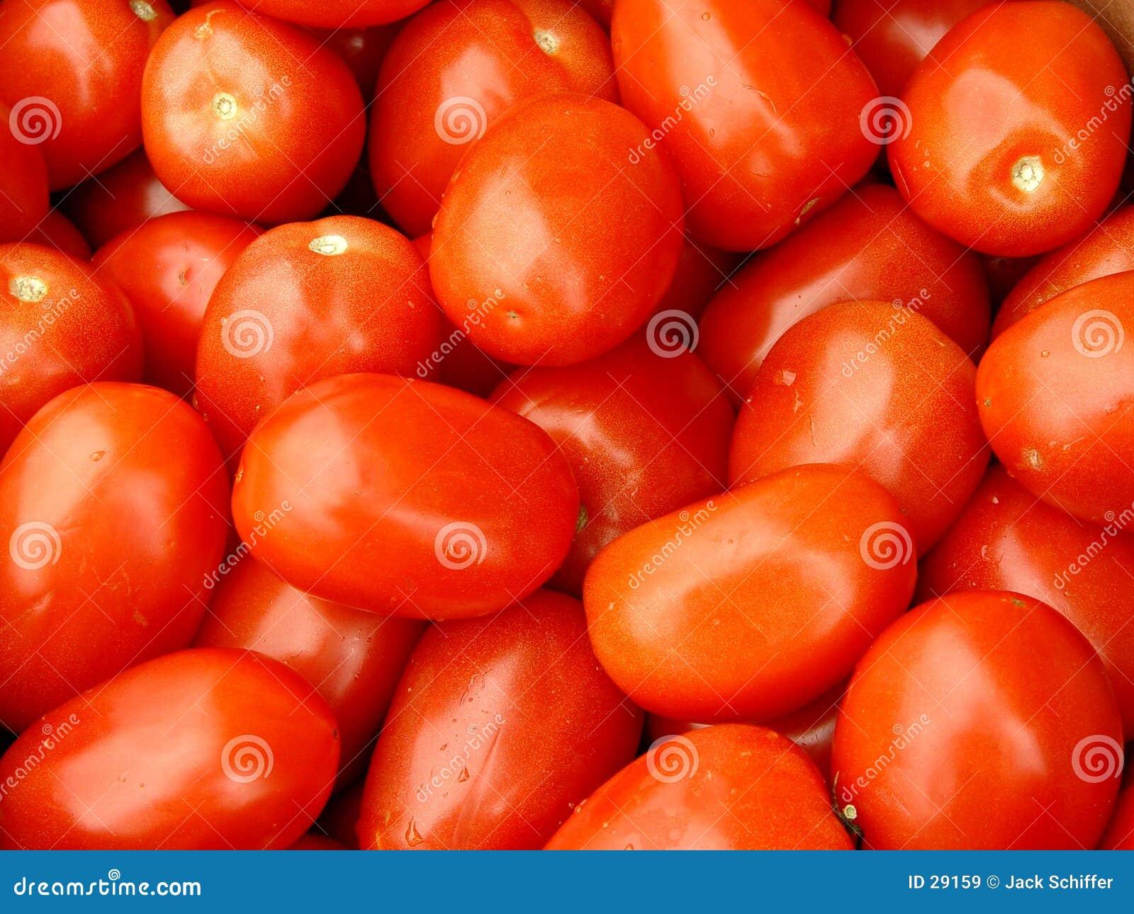 Download Pomidory romów obraz stock. Obraz złożonej z smakowity, tło - 29159
