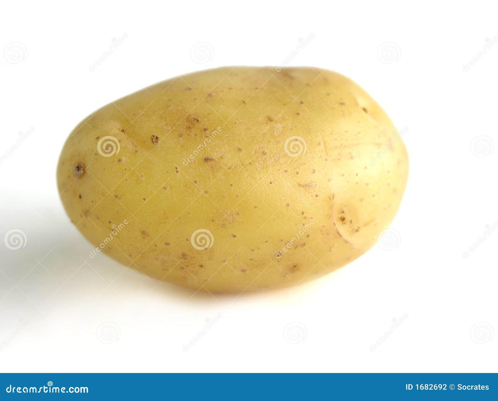 Pomme de terre photographie stock image 1682692 - Pomme de terre germee comestible ...