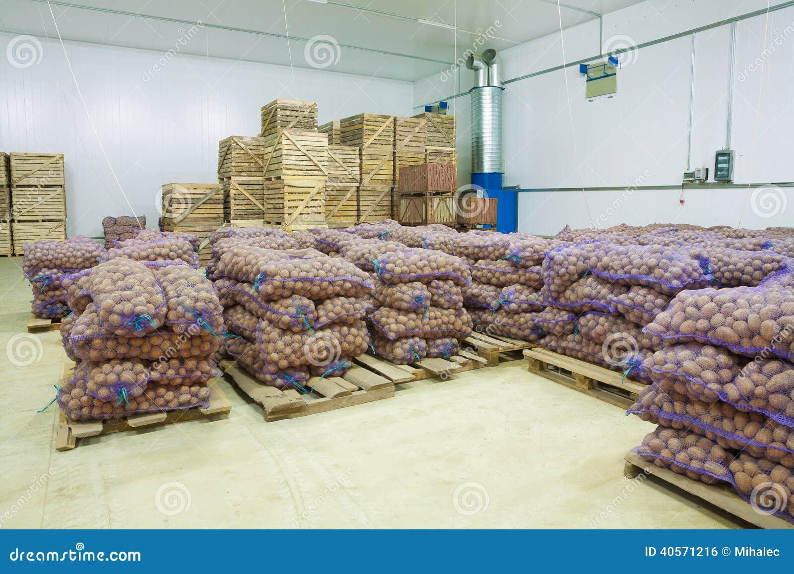 pomme de terre de maison de stockage dans les sacs et des caisses photo stock image du moisson. Black Bedroom Furniture Sets. Home Design Ideas