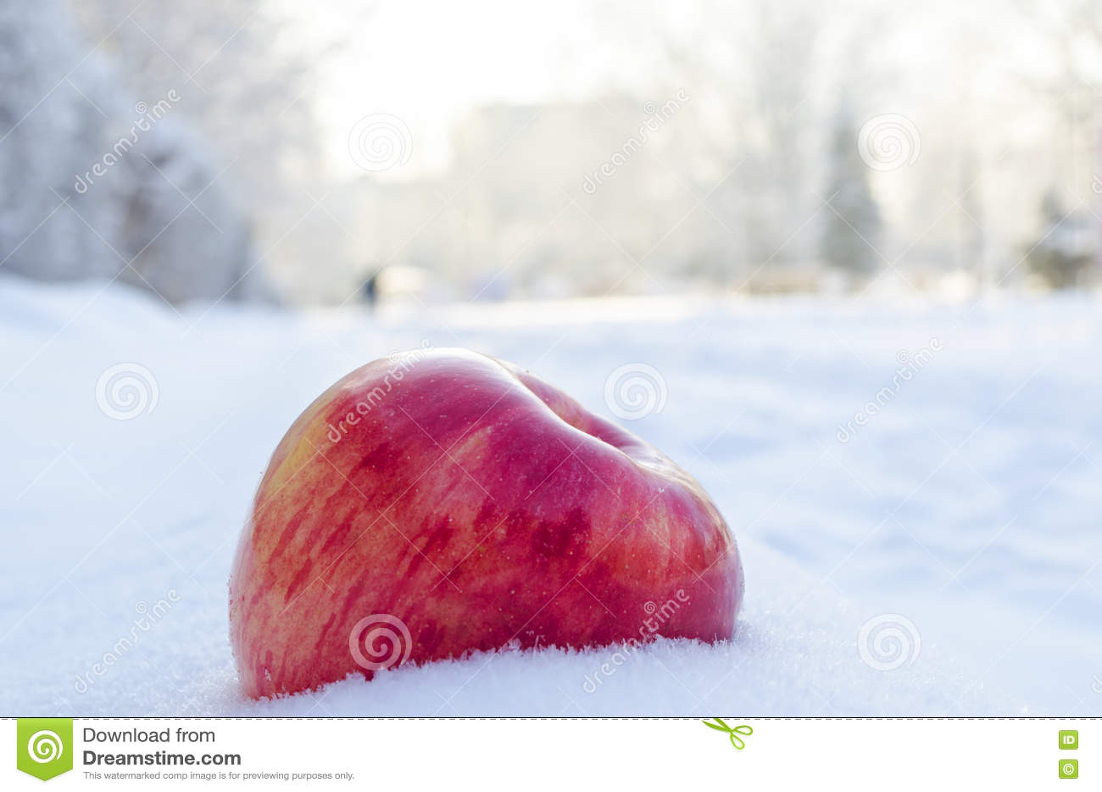 Pomme rouge sur le blanc et la neige d air