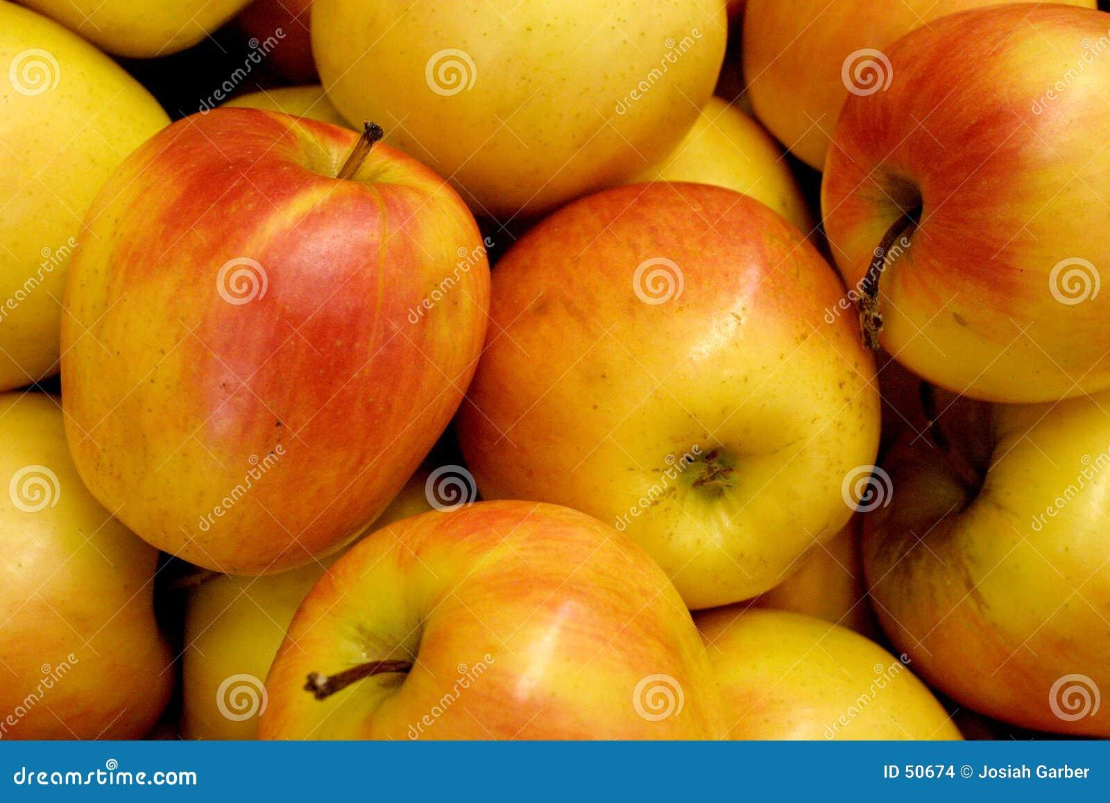 Download Pommes photo stock. Image du progrès, cire, cuisine, croûte - 50674