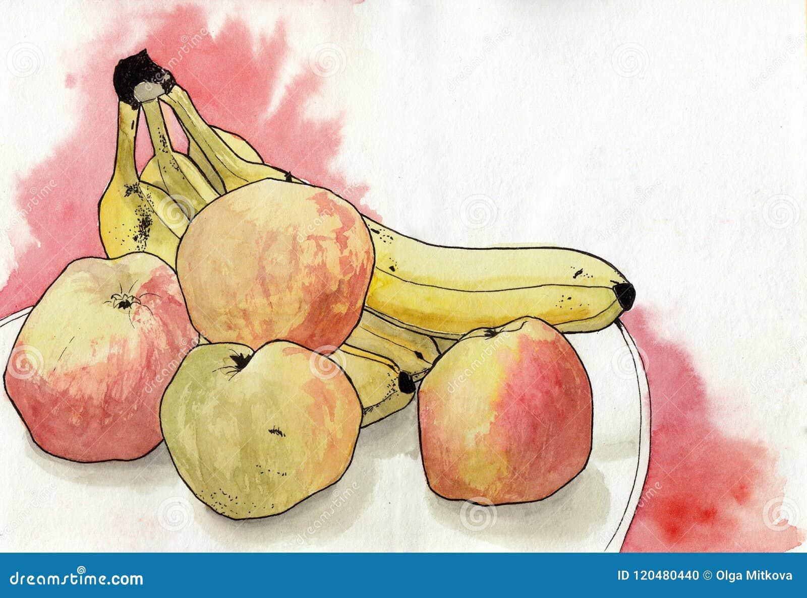 Pommes d aquarelle, banane sur le fond blanc Peinture de main sur le papier