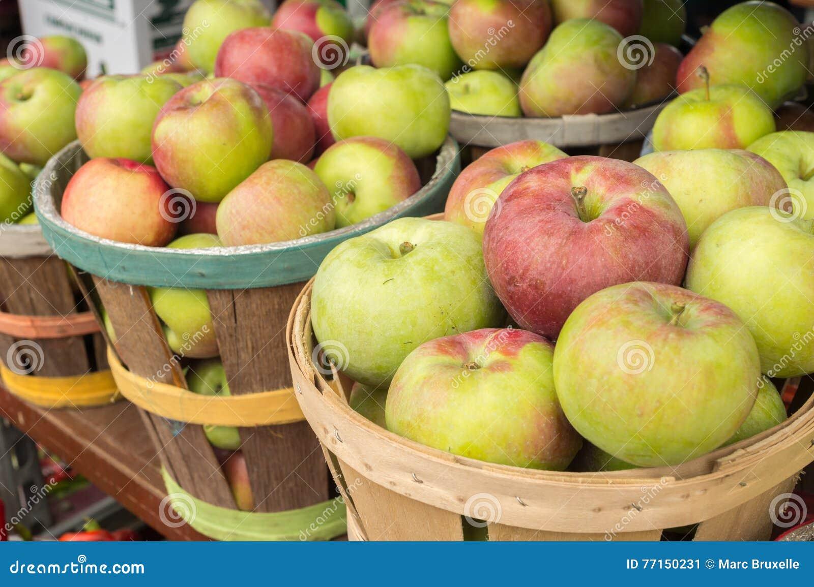Pommes de Lobo dans un panier