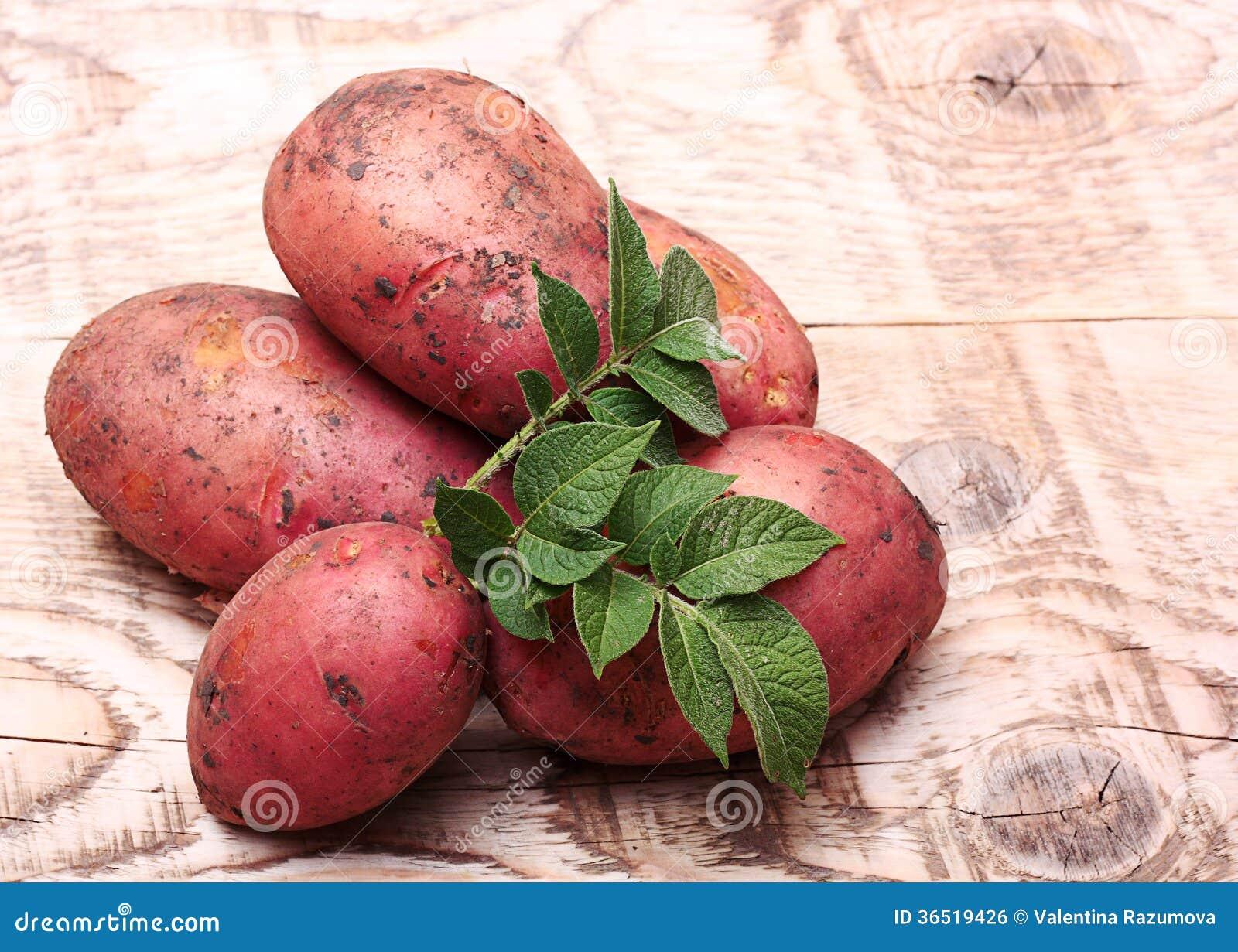Pommes de terre avec des feuilles