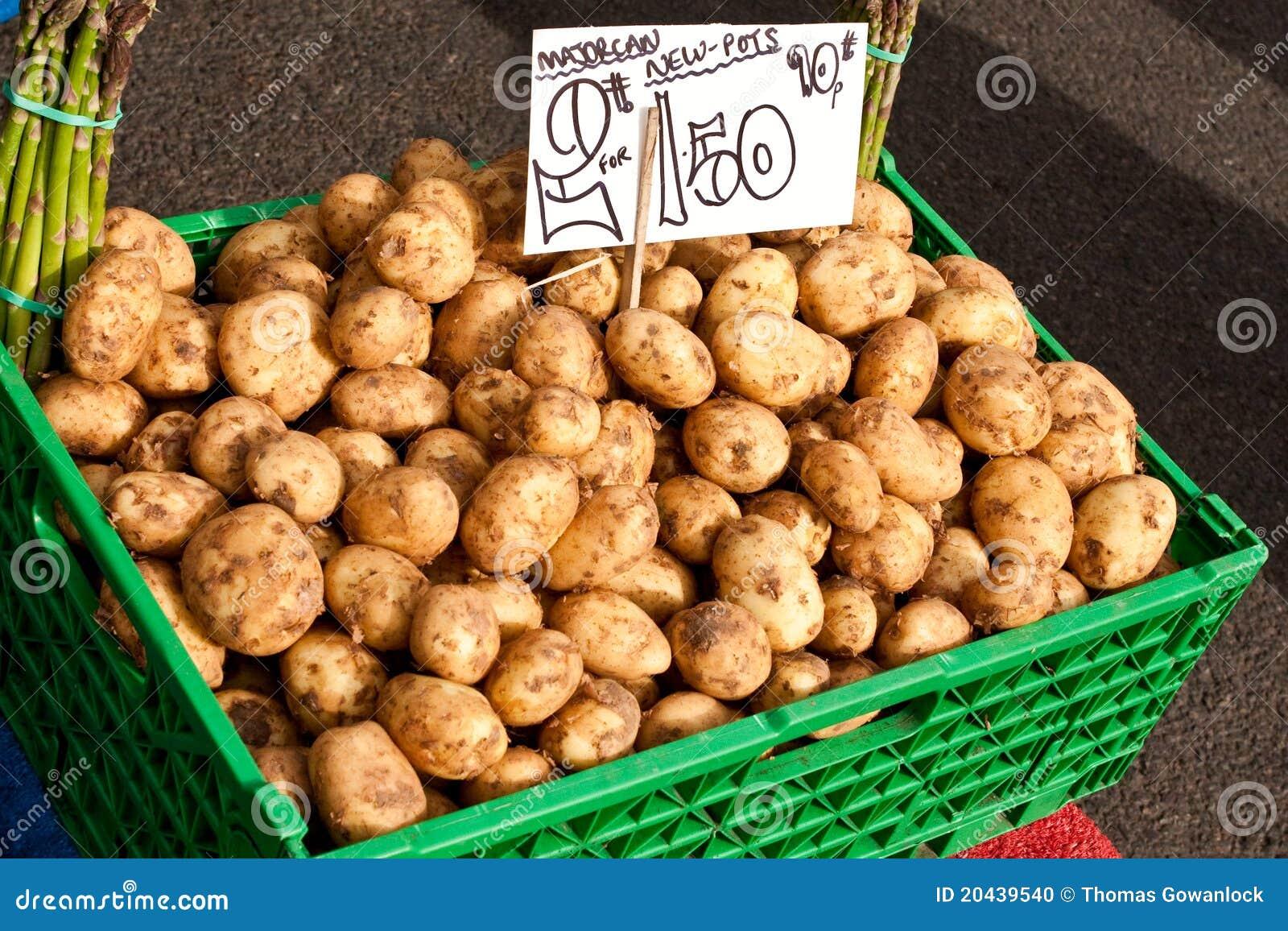 pommes de terre de primeurs photo stock image du ingr dient march 20439540. Black Bedroom Furniture Sets. Home Design Ideas