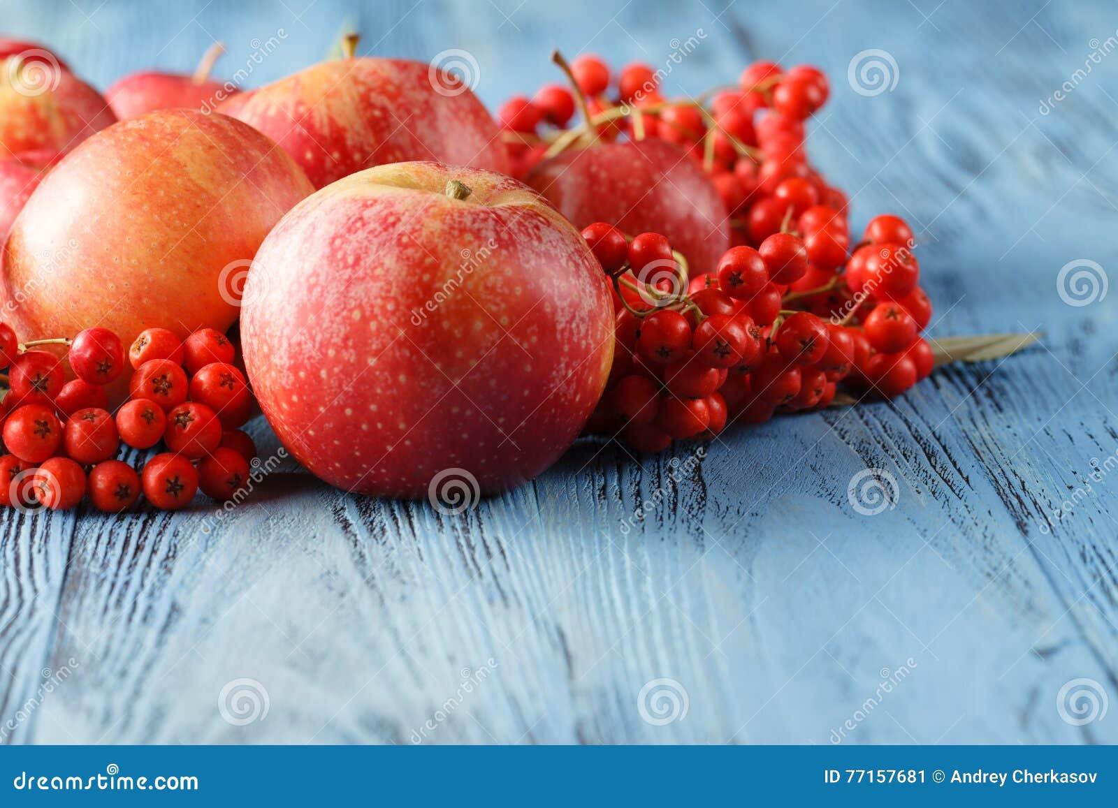 Pommes et baie de sorbe D automne toujours durée