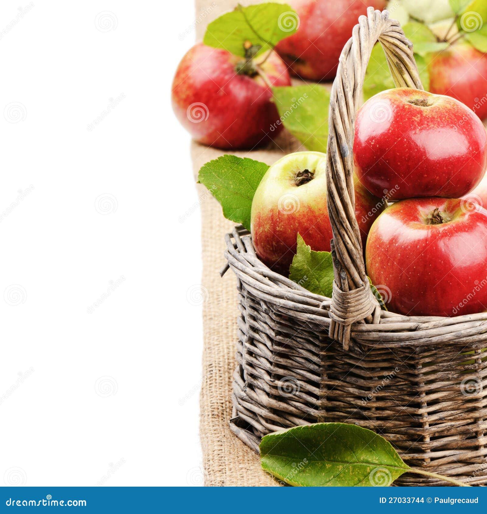 Pommes organiques fraîches dans le panier en osier