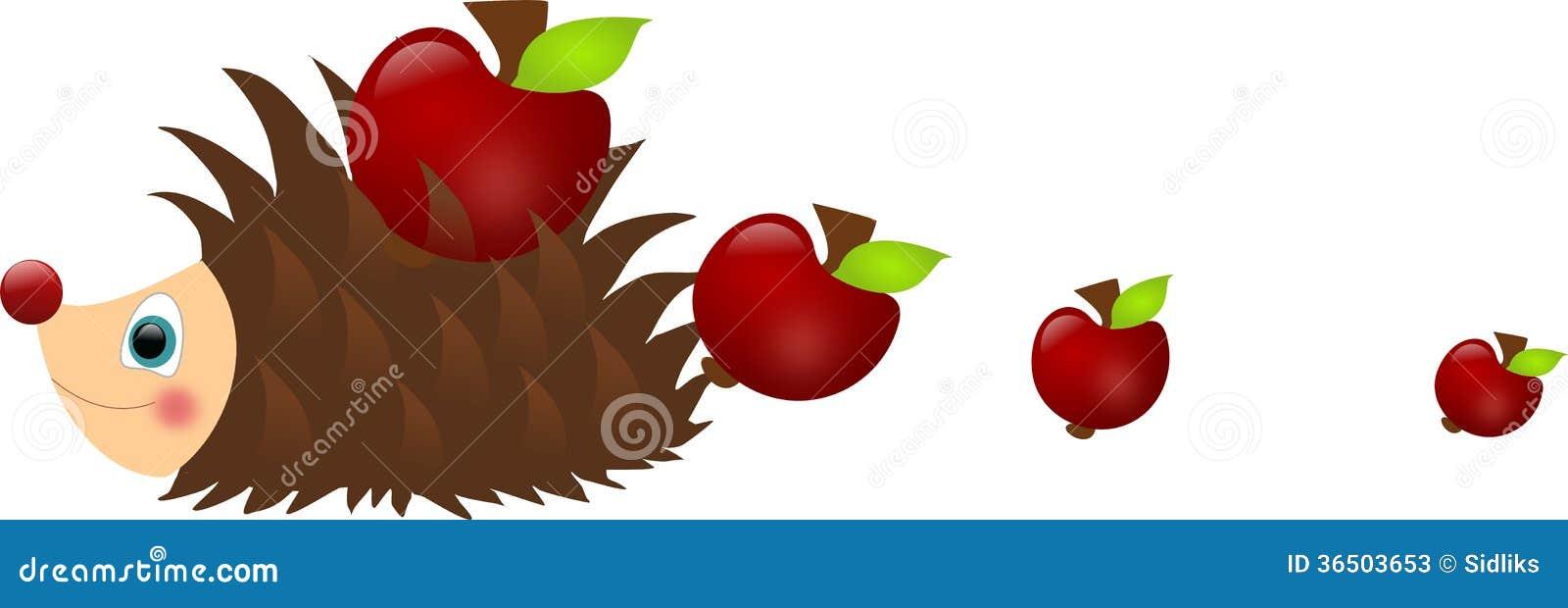 Pommes perdantes de hérisson
