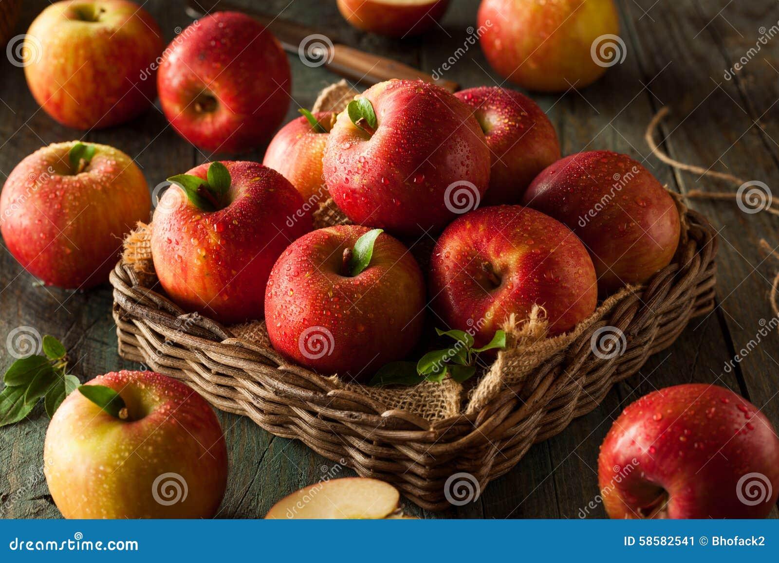 Pommes rouges crues de Fuji