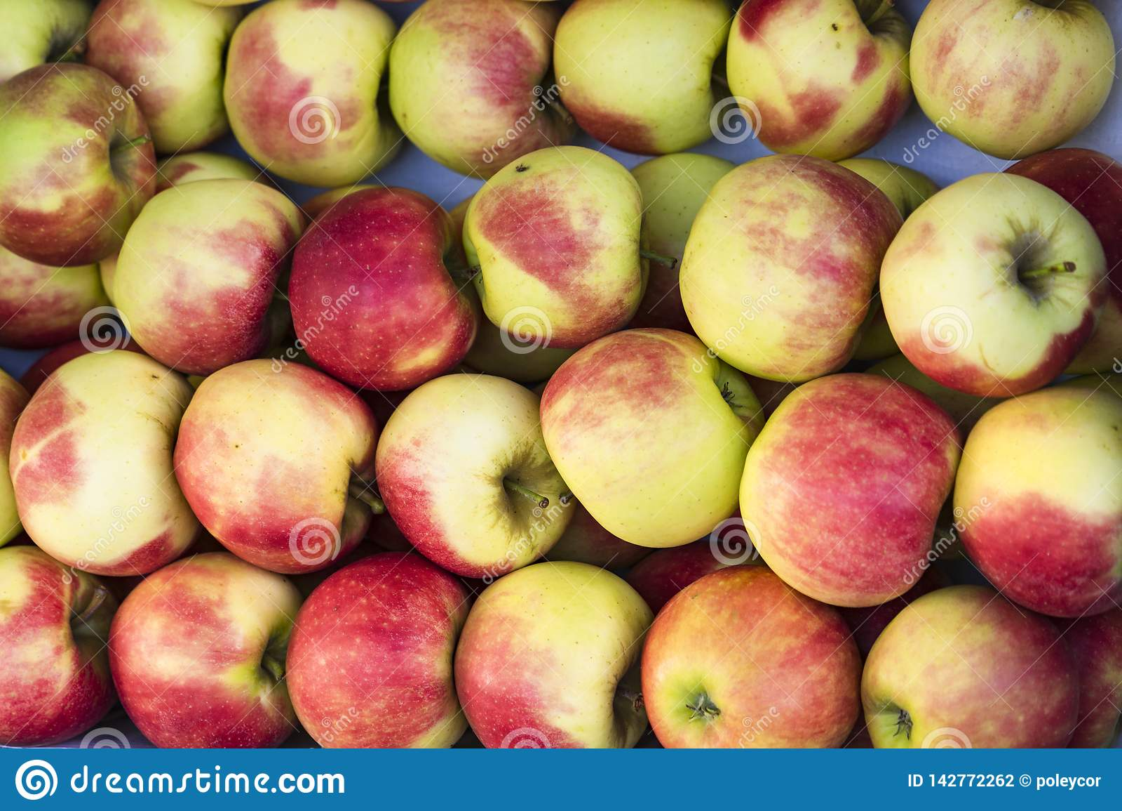 Pommes vertes rouges d Elstar de tas