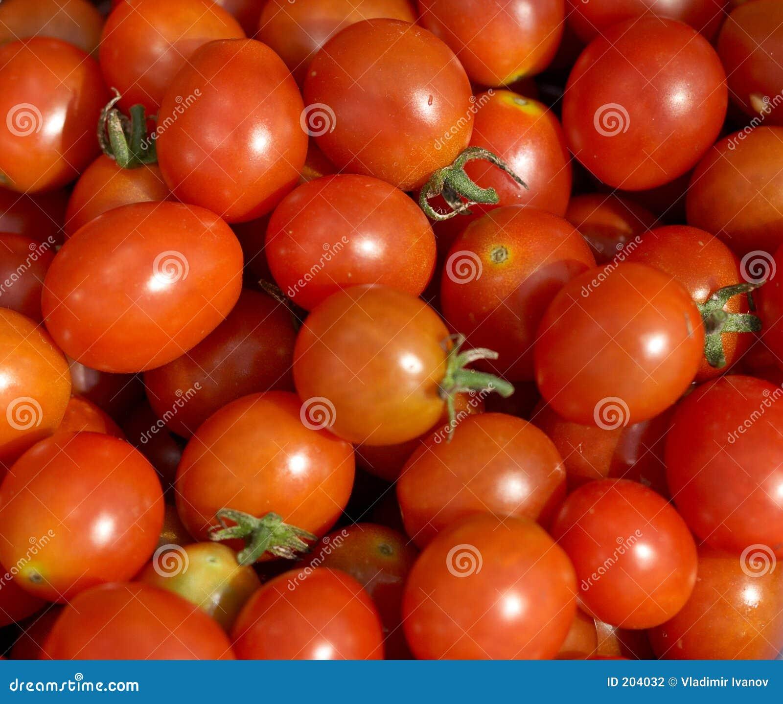 Pomodori dell uva