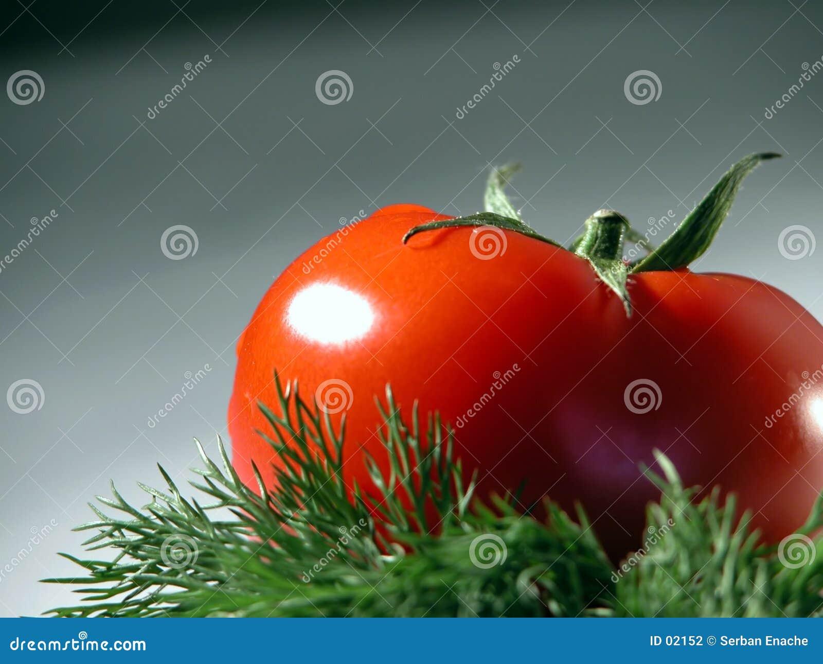 Pomodoro ed aneto freschi