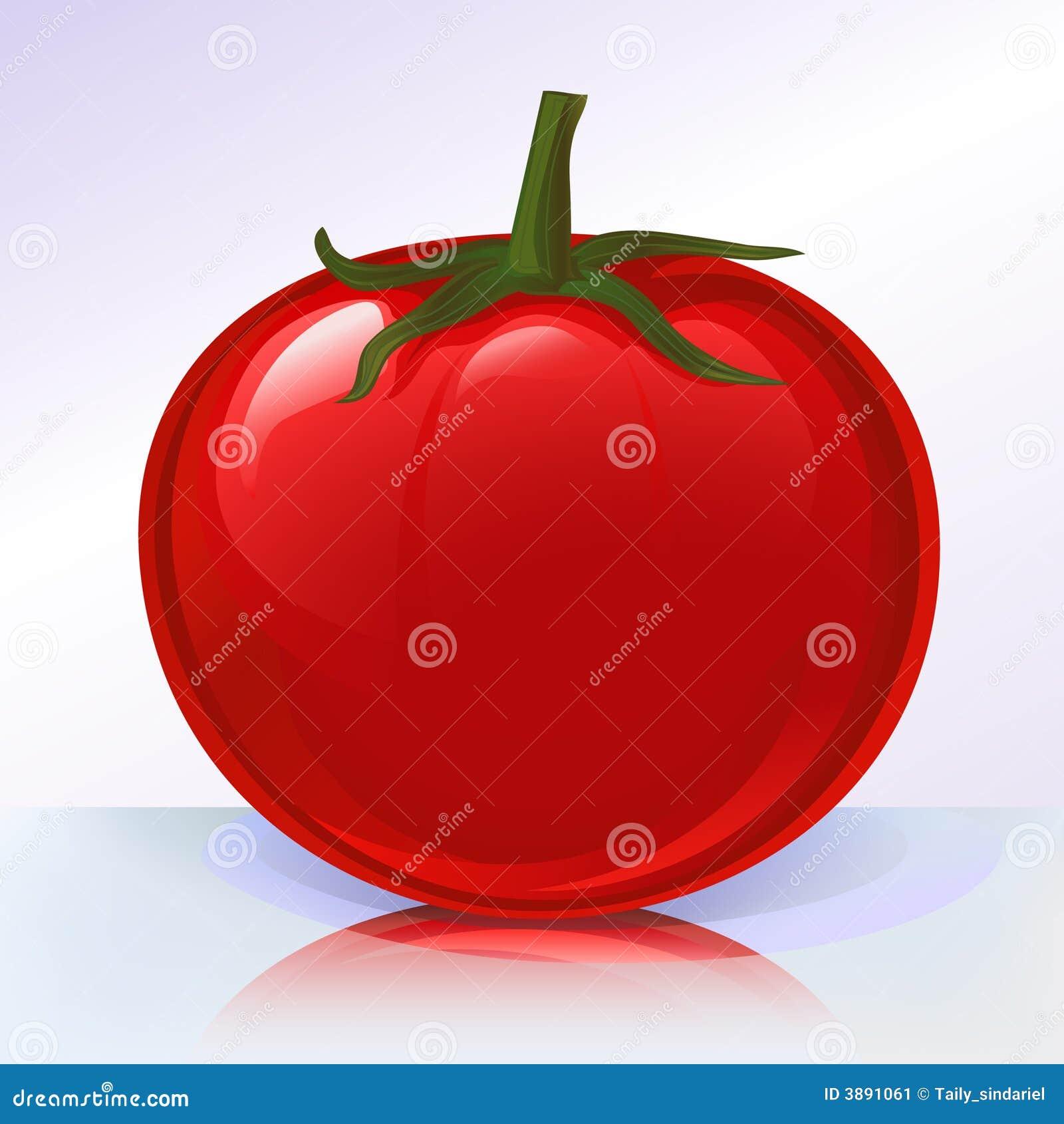 Pomodoro fresco su sur di riflessione