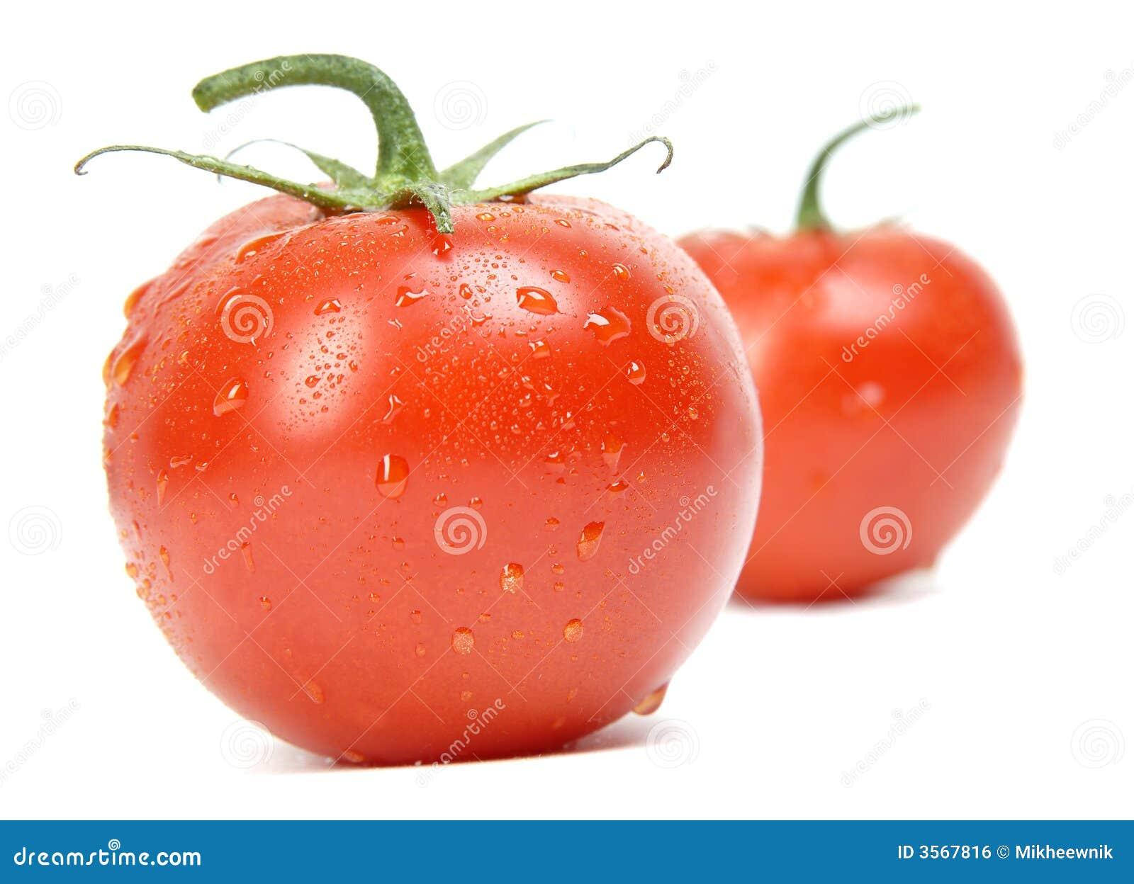 Pomodoro isolato