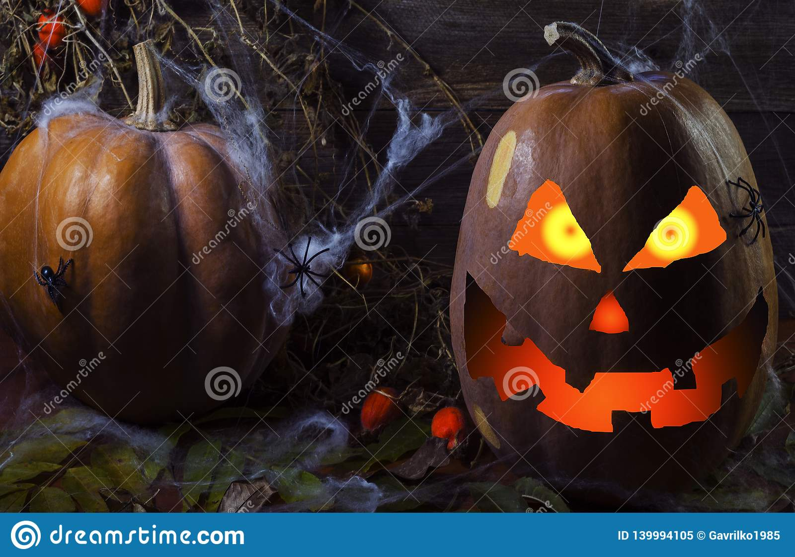Pompoen in het Web en spinnen op de achtergrond van de boom voor Halloween 4