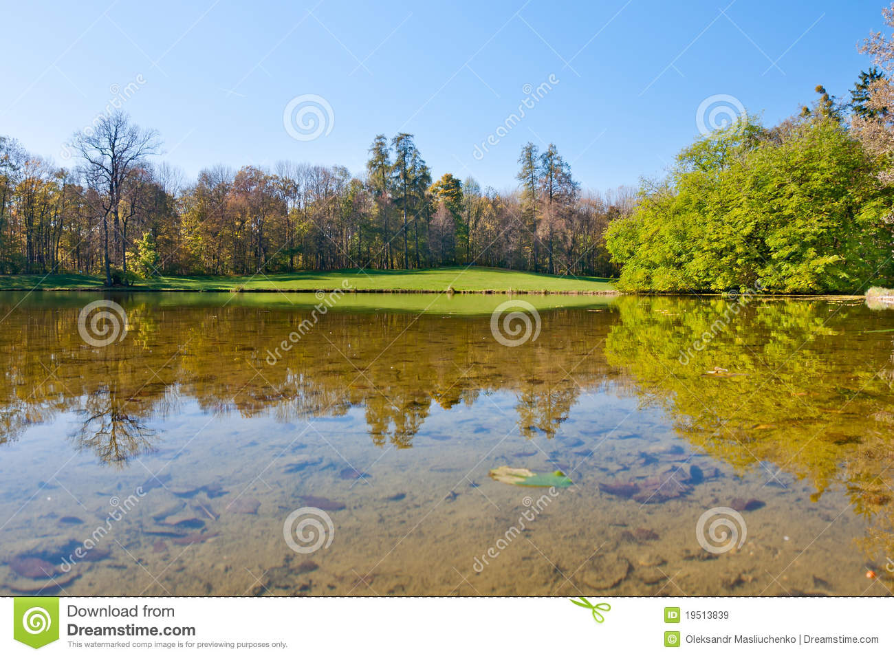 Pond Royalty Free Stock Images Image 19513839
