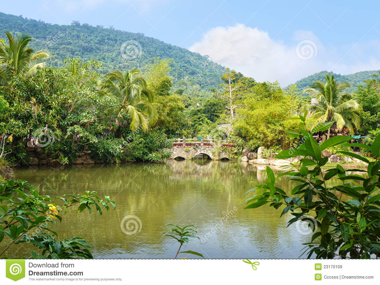 Pond Royalty Free Stock Images Image 23170109