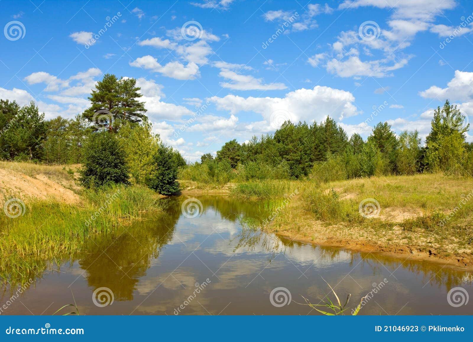 Forest pond stock image 25320475 for Pond dealers