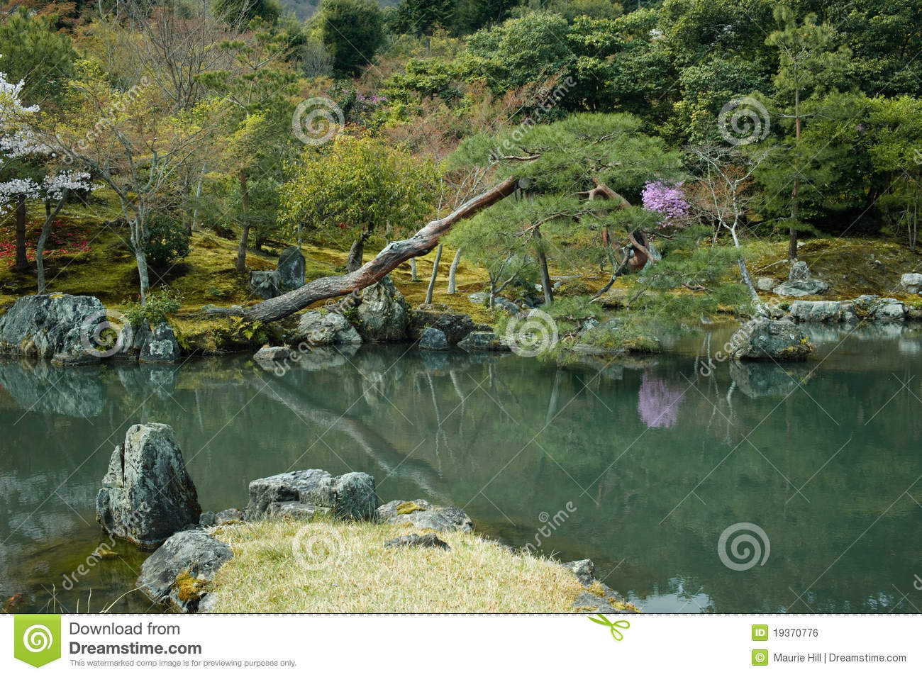 Pond in a formal japanese garden royalty free stock image for Formal japanese garden