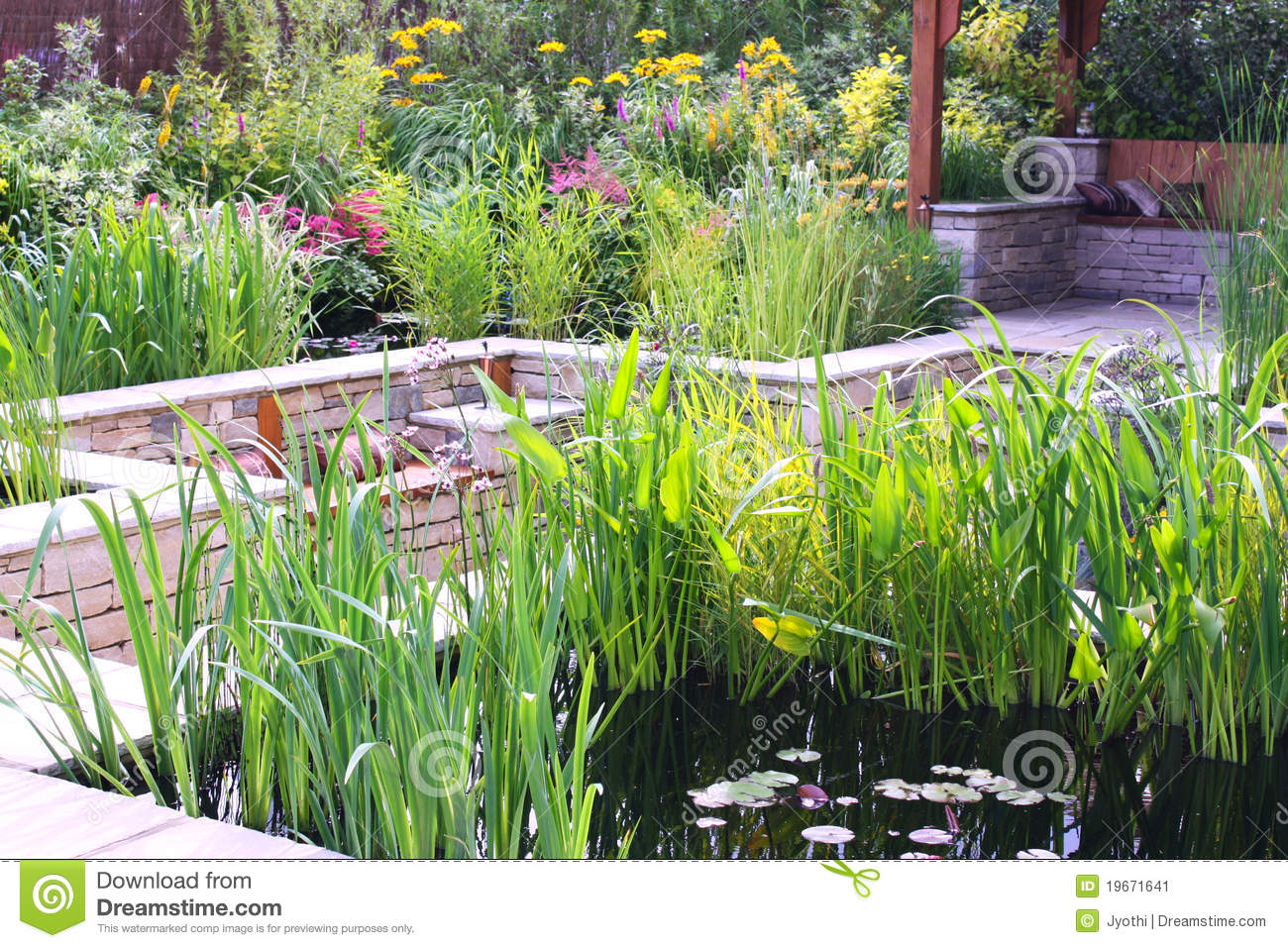 Pond garden stock image image 19671641 for Garden pond unlimited