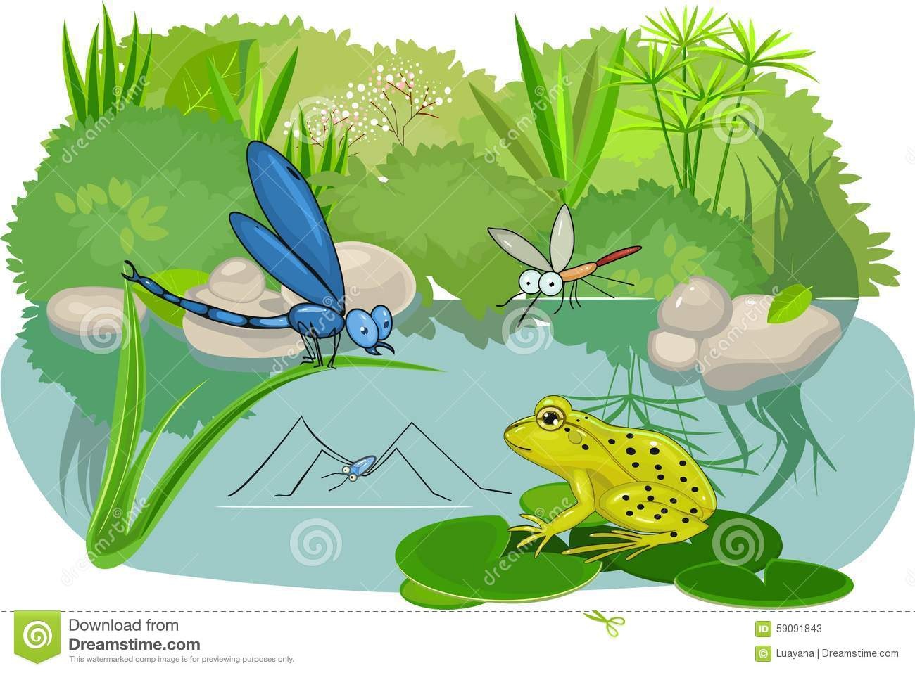 At The Pond Stock Vector Illustration Of Dragonfly Marsh