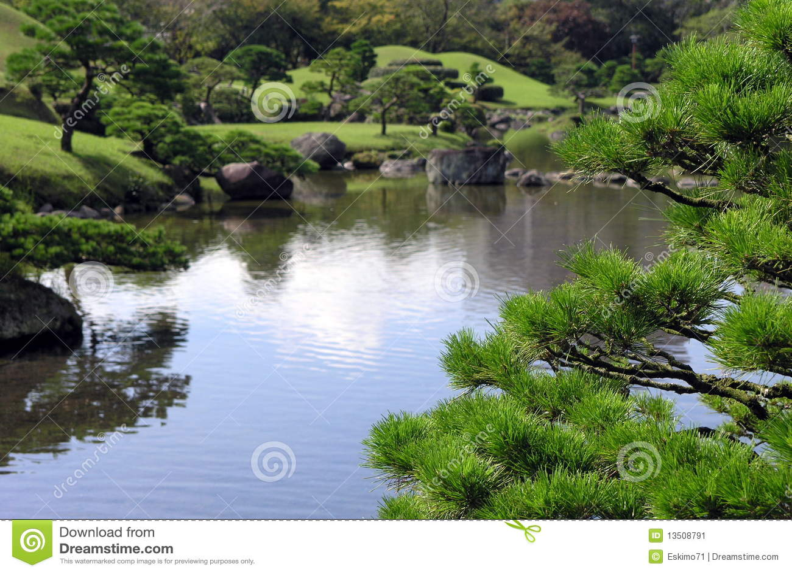 Pond in japanese garden stock image image 13508791 for Japanese pond plants