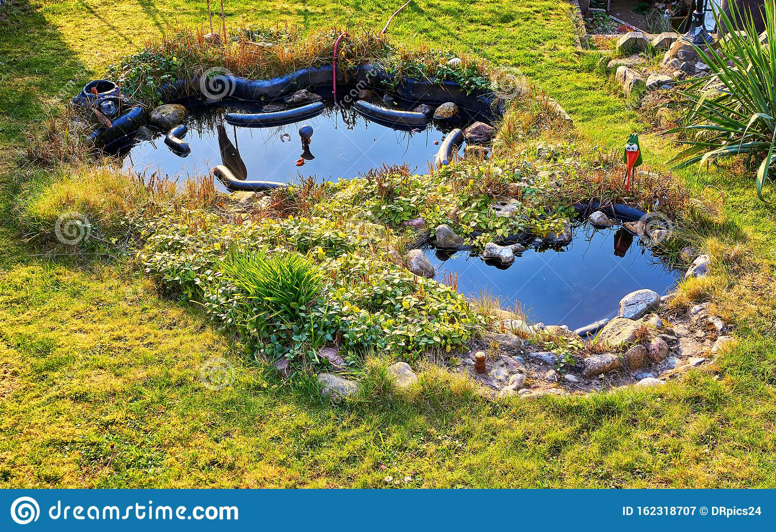 Pond In Landscape Design In A Small Garden As Nature Background Stock Image Image Of Grass Tranquil 162318707