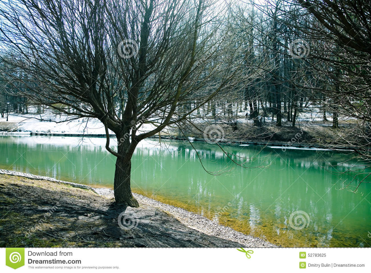 Pond stock photo image 52783625 for Green water in pond