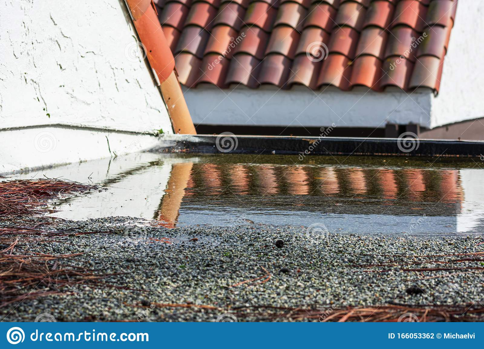 Ponding Water On Flat Roof Covered With Tree Debris After ...