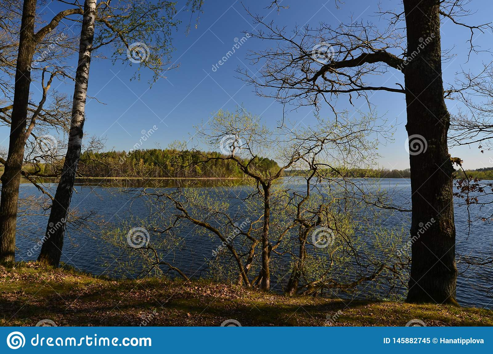 Ponds in the countryside, Kaclezsky Pond of South Bohemia