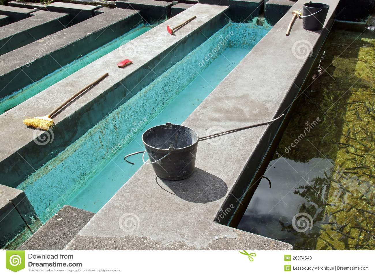 Ponds of fish farming and its equipment stock photo for Pond construction for fish farming