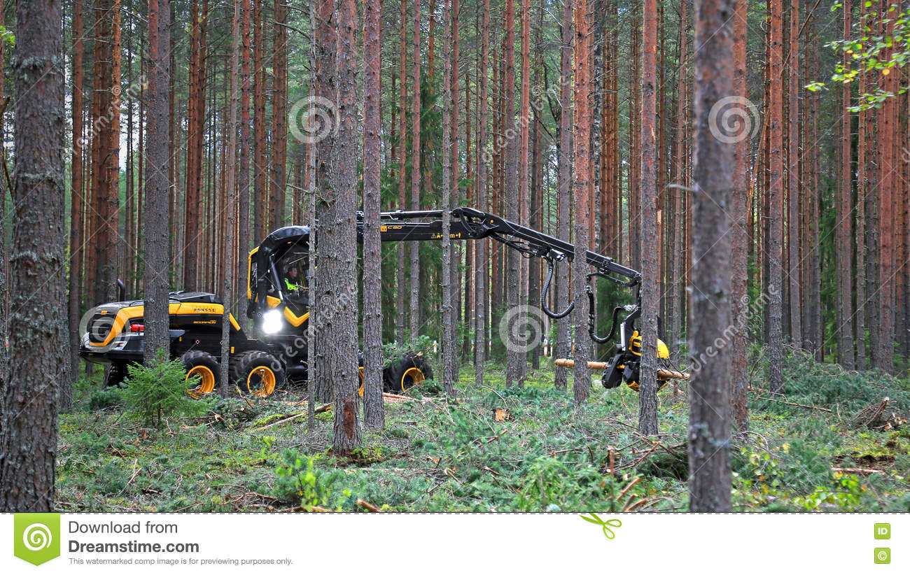 Ponsse Harvester Scorpion King Working in Forest
