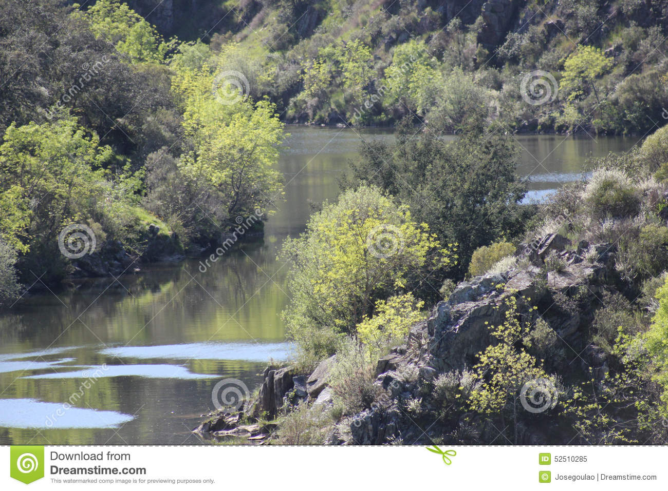 Fluss In Portugal ponsul river tributary of tagus portugal stock image image of