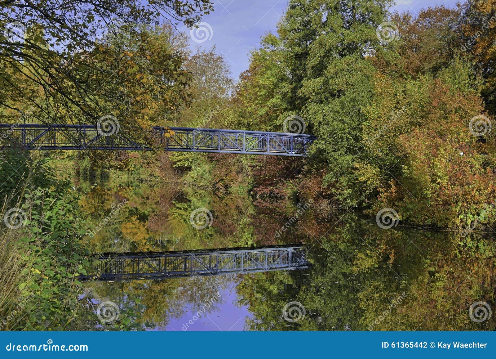 Pont bleu entouré par les arbres colorés