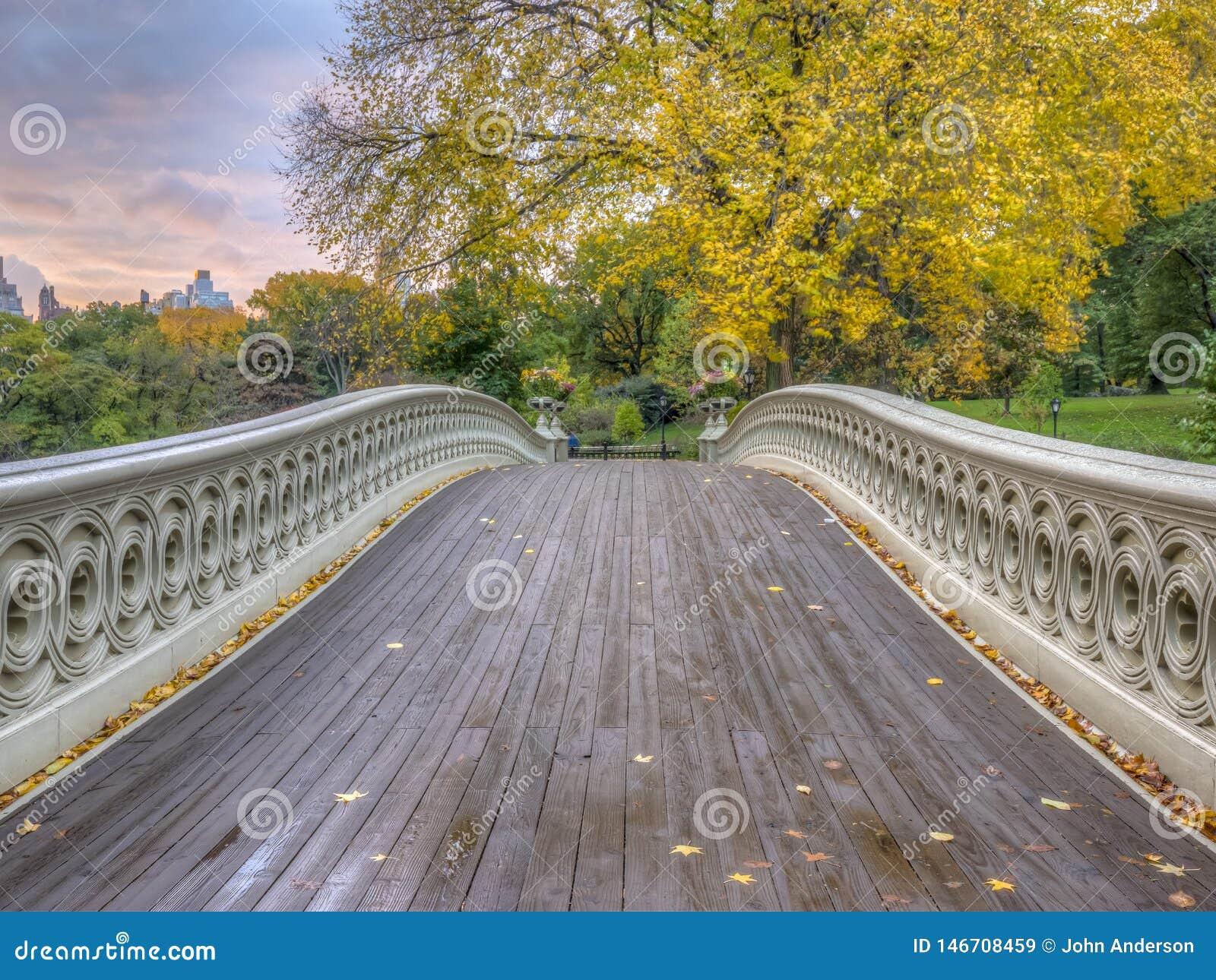 Pont d arc, Central Park, New York CIT