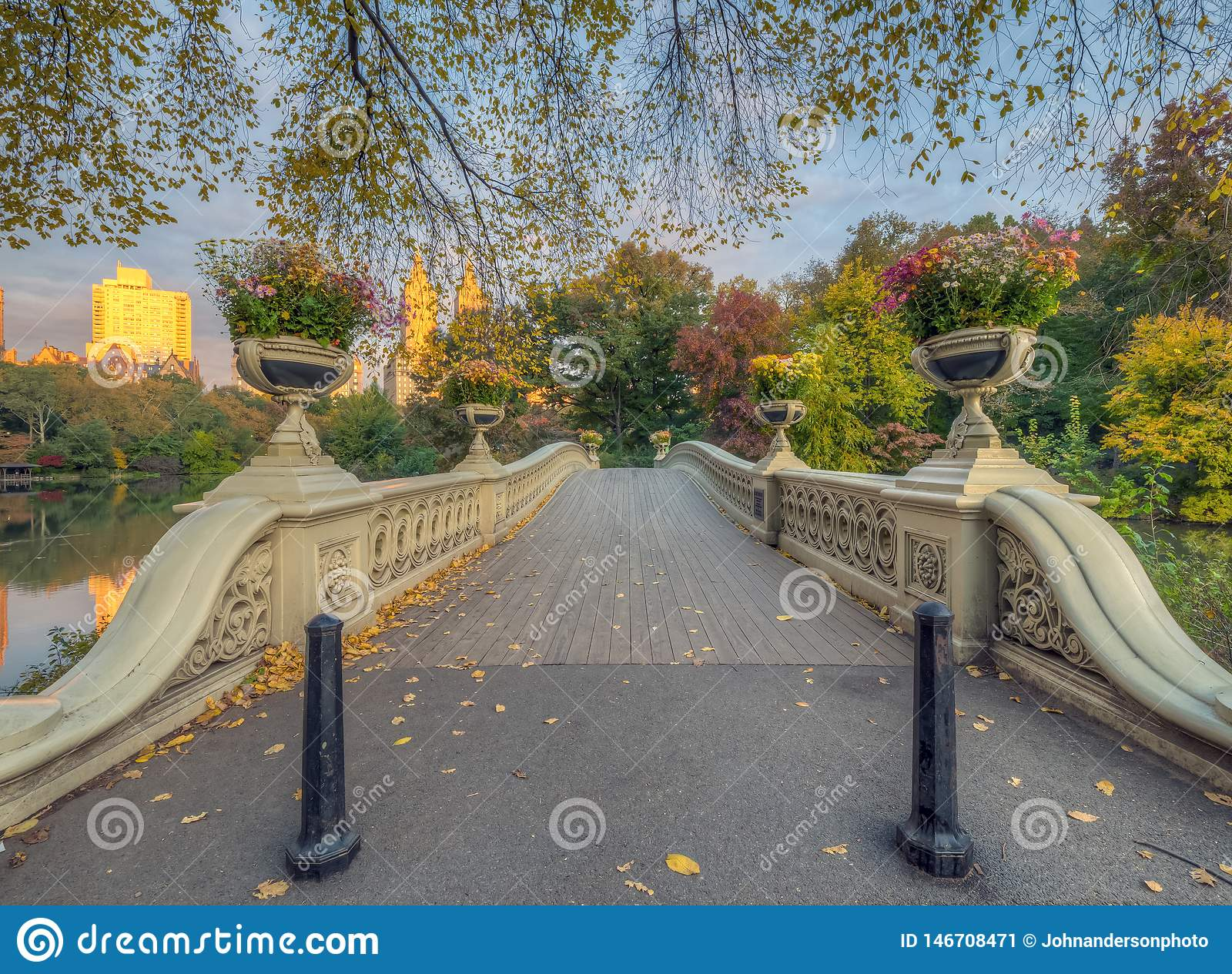 Pont d arc, Central Park, New York CIT