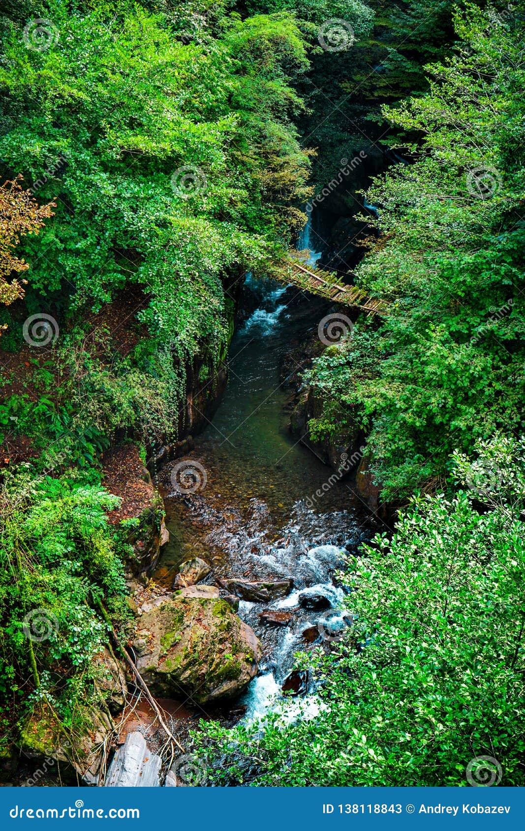 Pont en bois au-dessus d une rivière de montagne L Abkhazie orientale Près de la ville de Tkvarcheli Le secteur de Kambarka