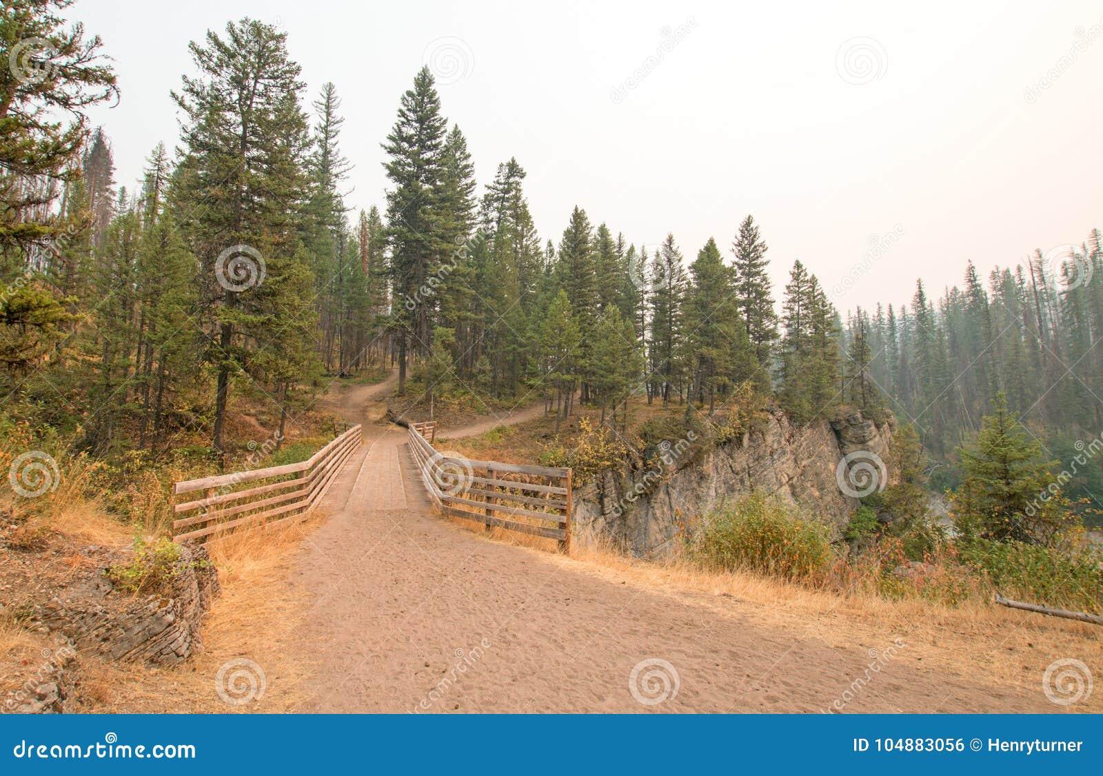 Pont en bois au-dessus de gorge de crique de pré pour la traînée de hausse et à cheval de emballage dans la région de Bob Marshal