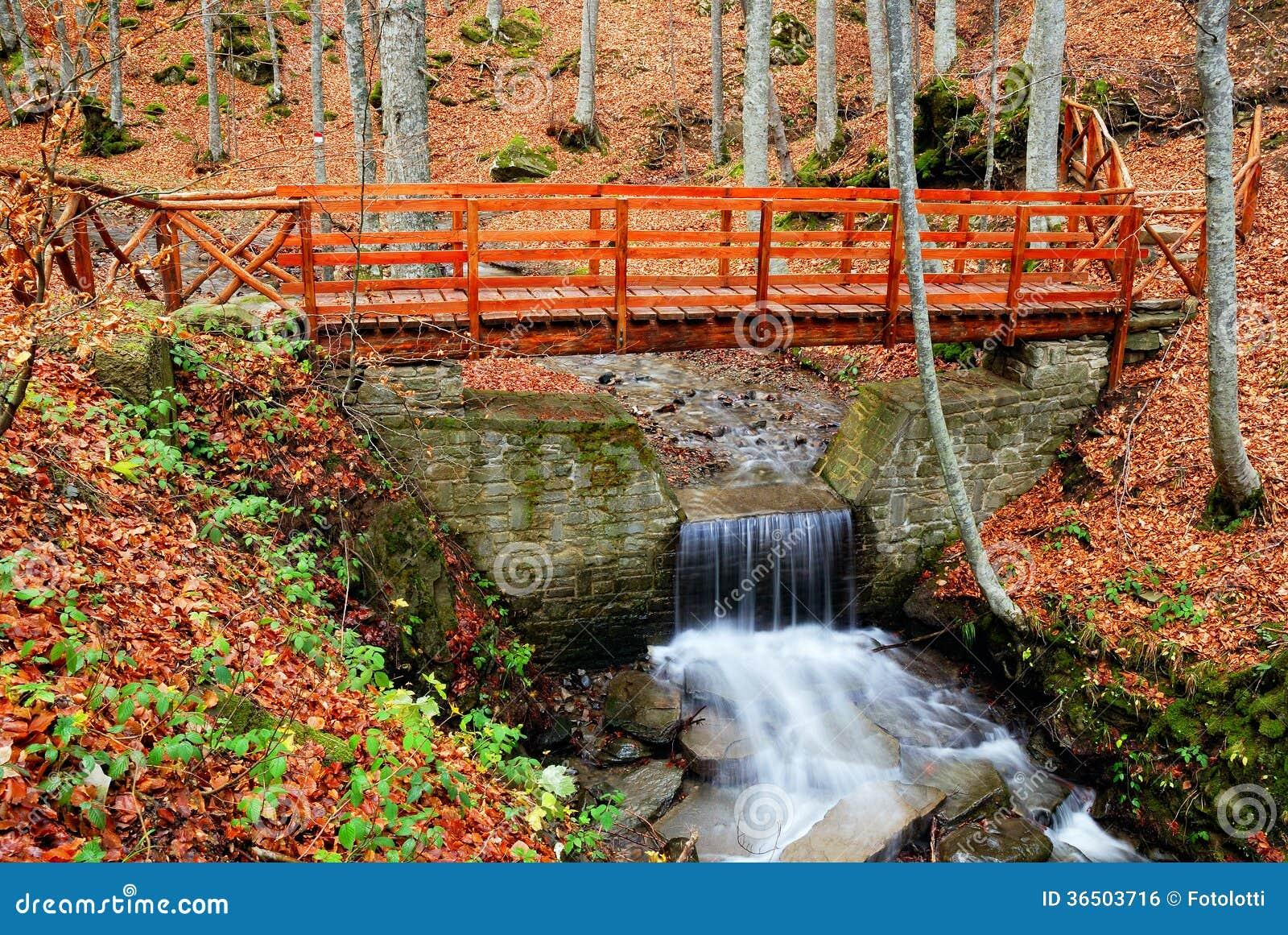 Pont en bois au-dessus du courant