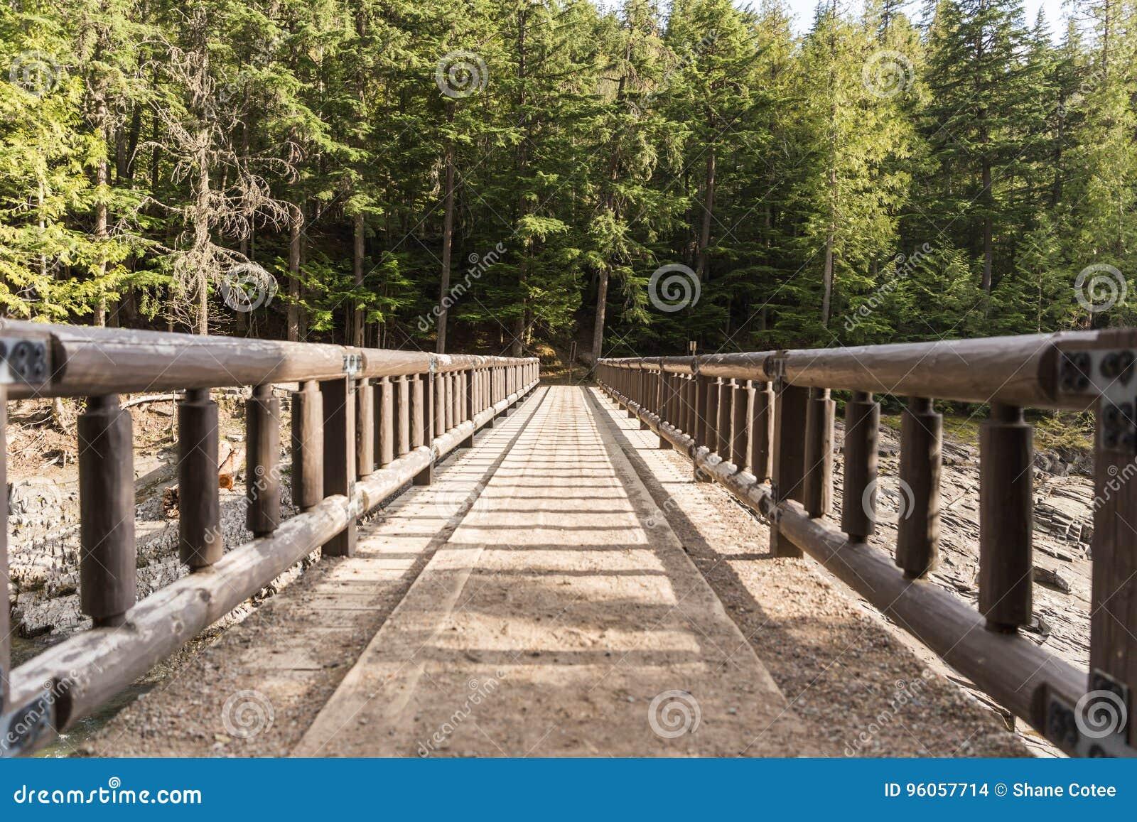 Pont en bois de pied menant à la forêt