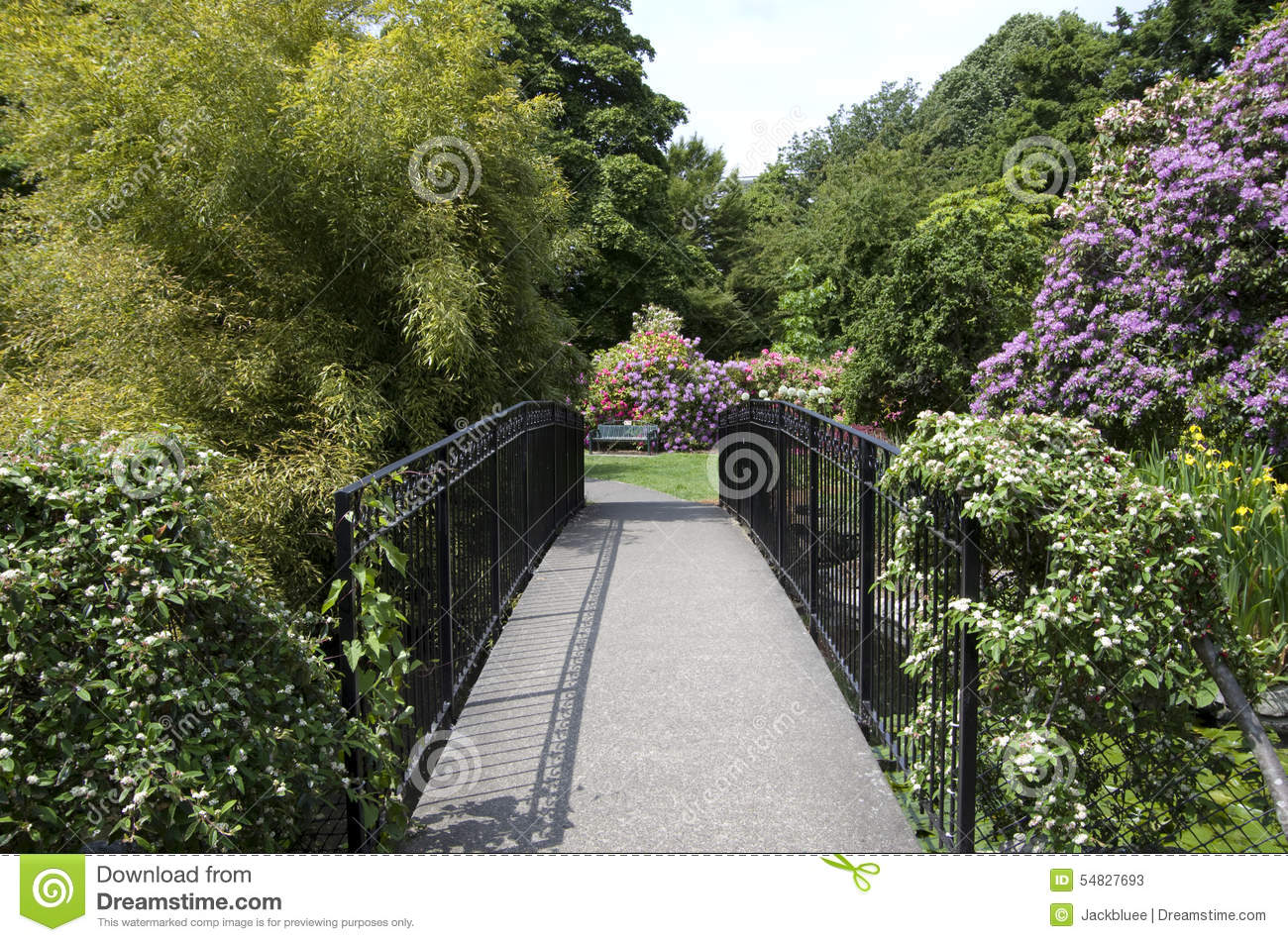 pont en chemin de jardin image stock image du conception 54827693. Black Bedroom Furniture Sets. Home Design Ideas