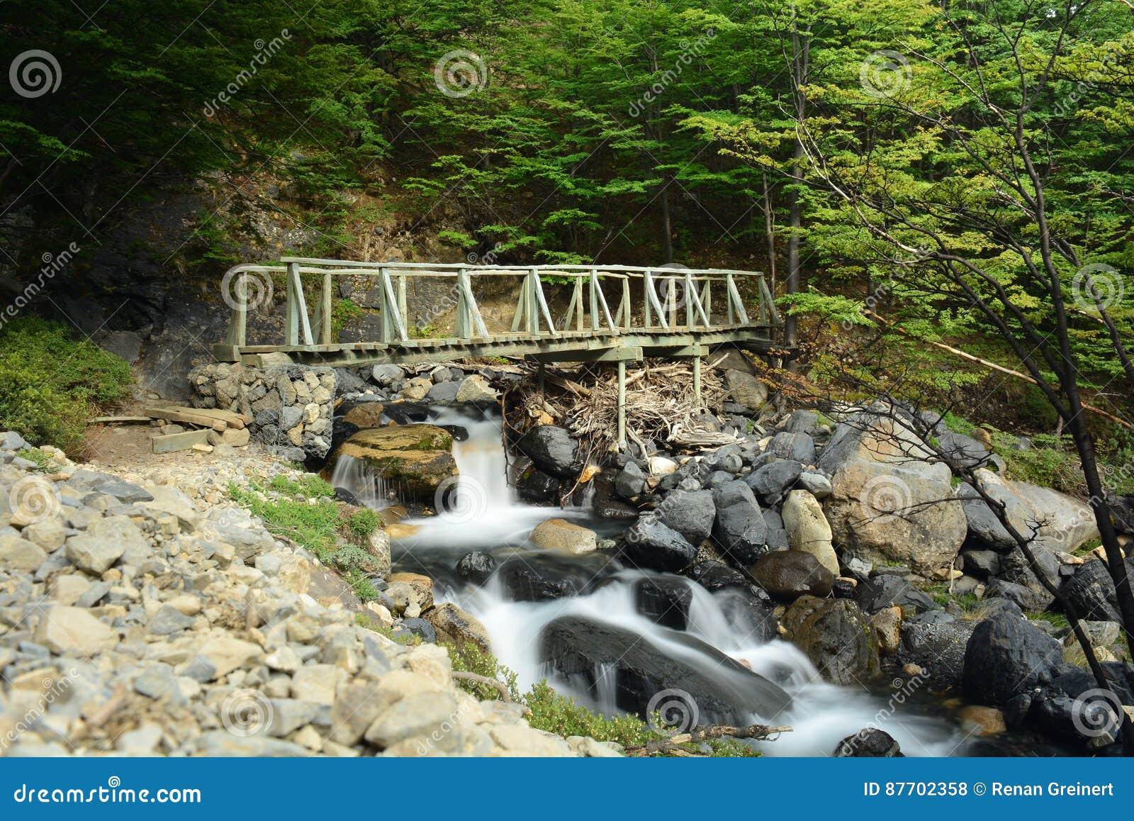 Pont en parc national de Torres del Paine, Chili