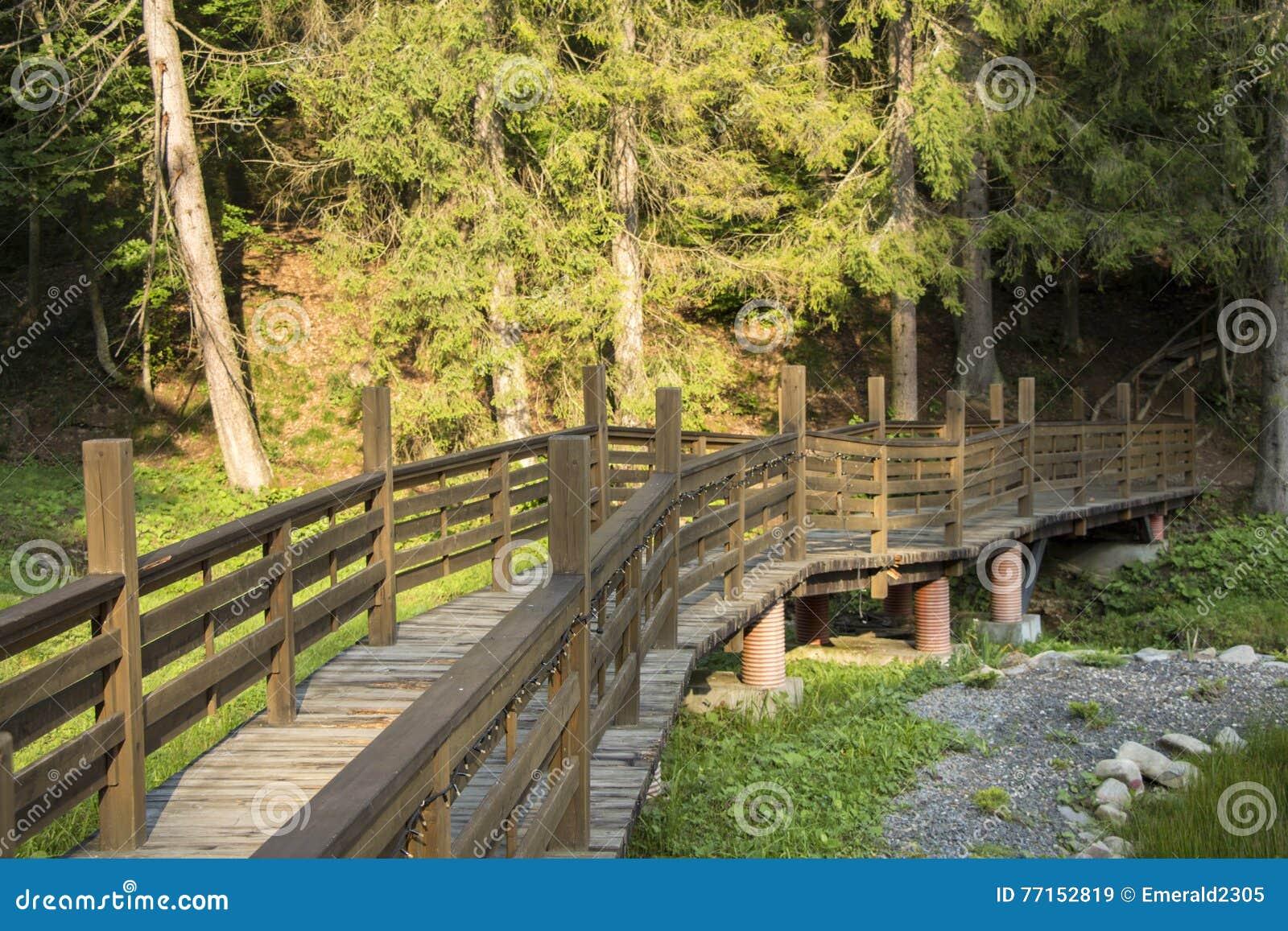 Pont par la forêt