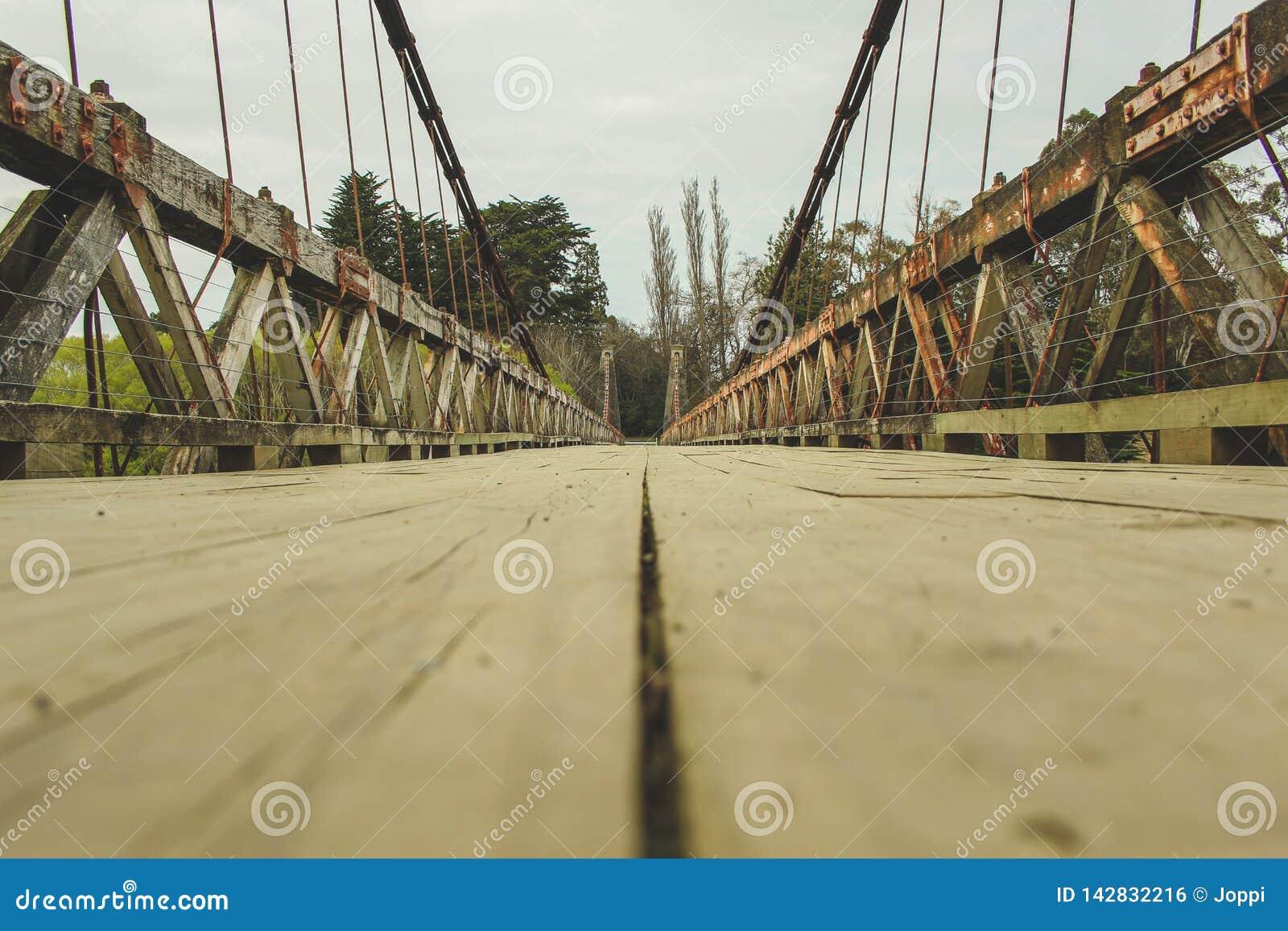 Pont suspendu de Clifden, île du sud, Nouvelle-Zélande