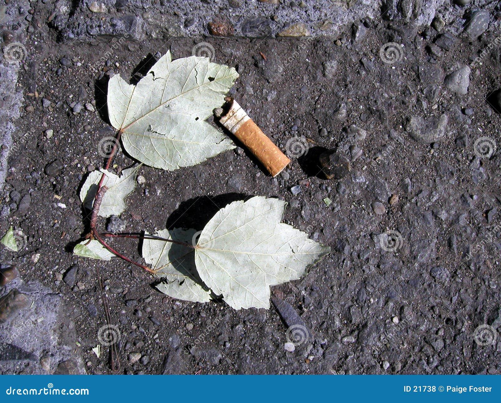 Ponta de cigarro