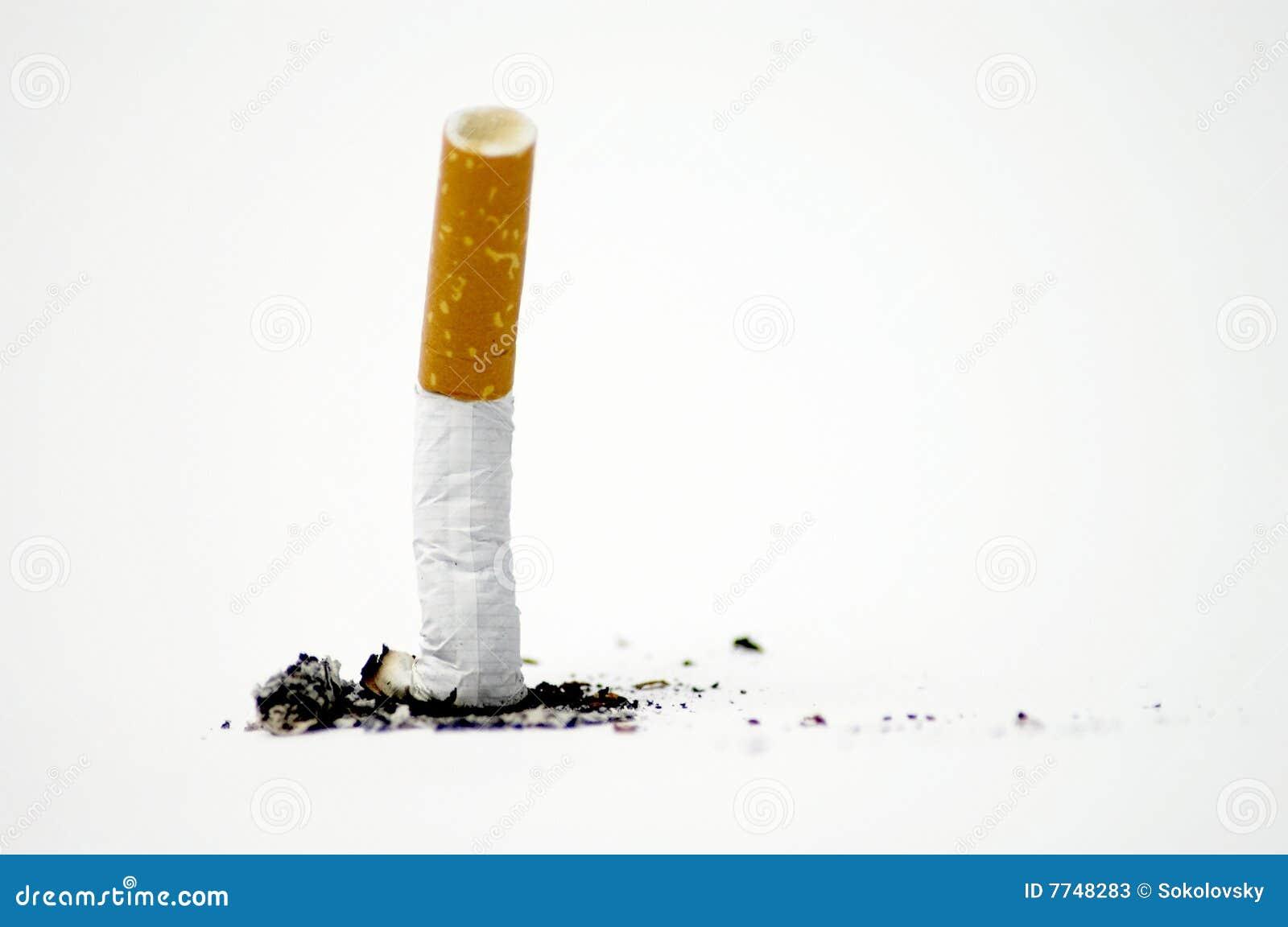 Ponta de cigarro no branco - não fumadores