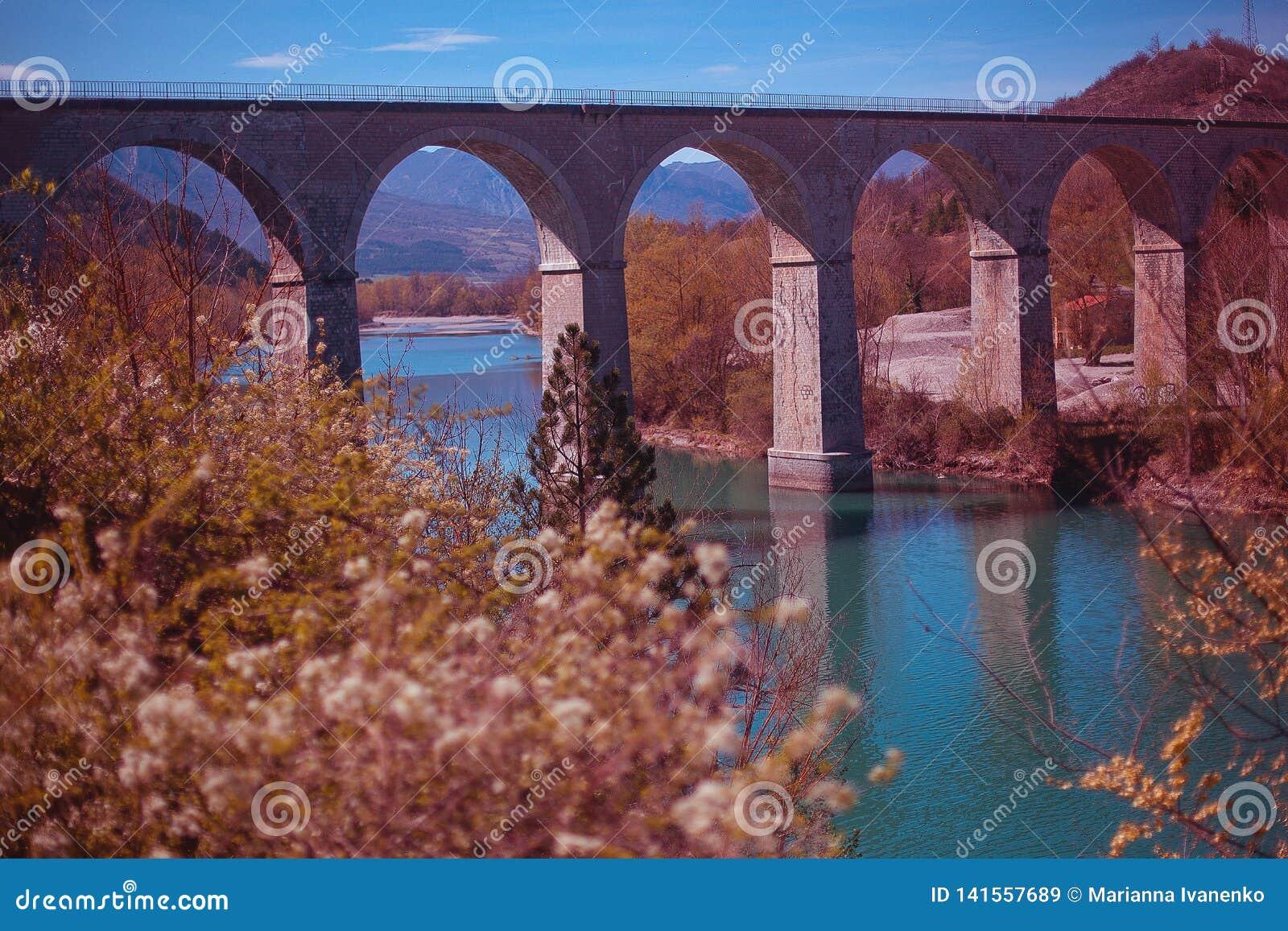 Ponte arqueada francesa em um rio com as árvores de florescência no primeiro plano